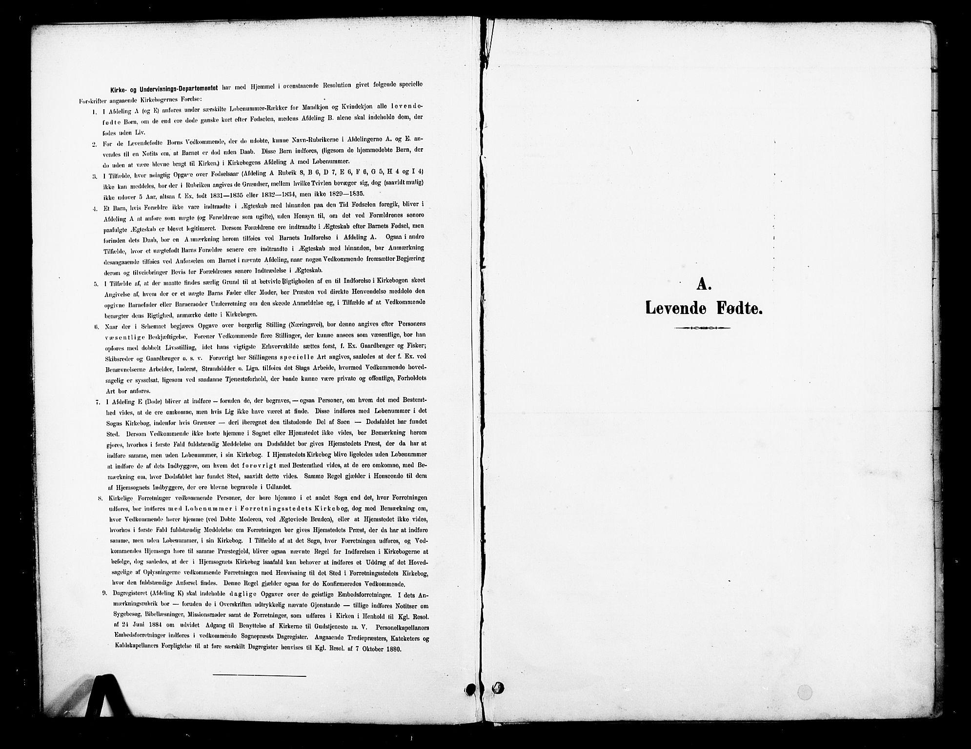 SAT, Ministerialprotokoller, klokkerbøker og fødselsregistre - Nord-Trøndelag, 739/L0372: Ministerialbok nr. 739A04, 1895-1903