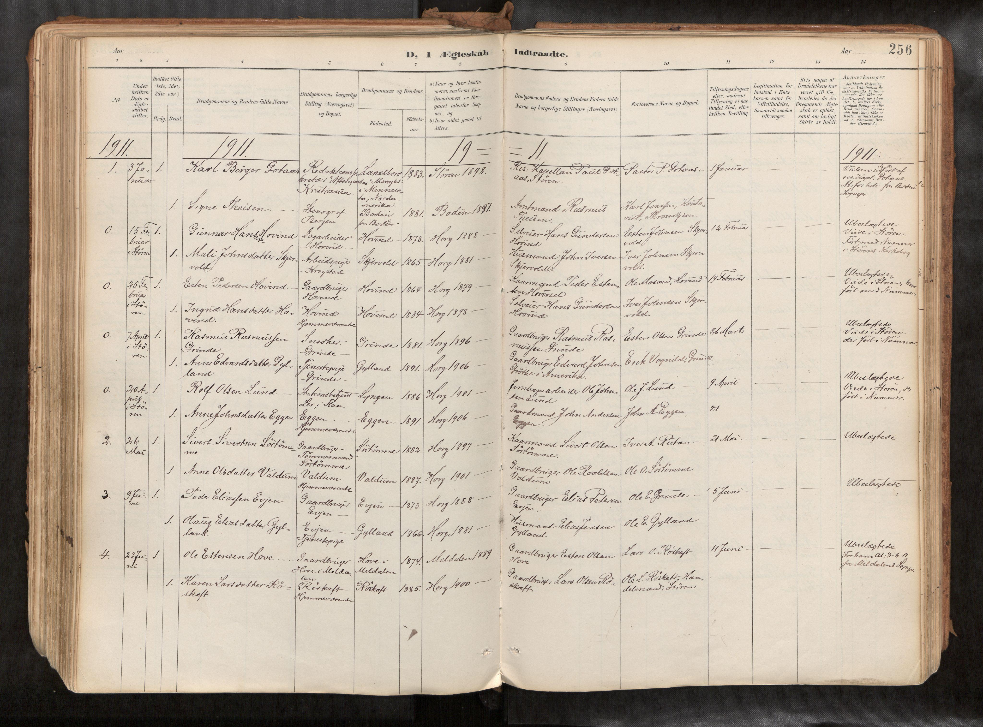SAT, Ministerialprotokoller, klokkerbøker og fødselsregistre - Sør-Trøndelag, 692/L1105b: Ministerialbok nr. 692A06, 1891-1934, s. 256