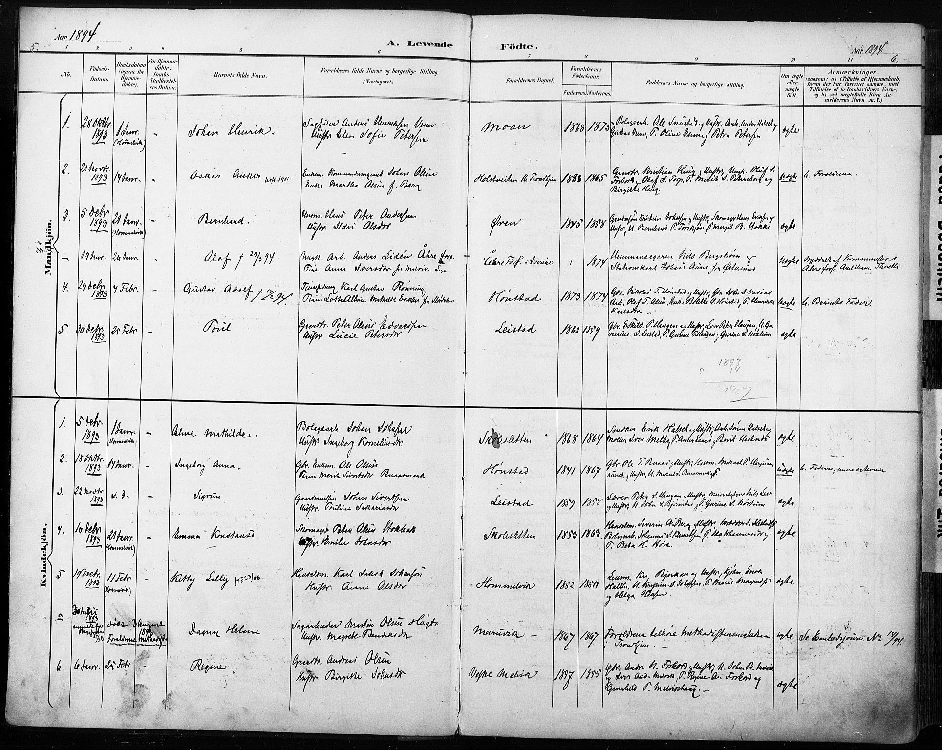 SAT, Ministerialprotokoller, klokkerbøker og fødselsregistre - Sør-Trøndelag, 616/L0411: Ministerialbok nr. 616A08, 1894-1906, s. 5-6