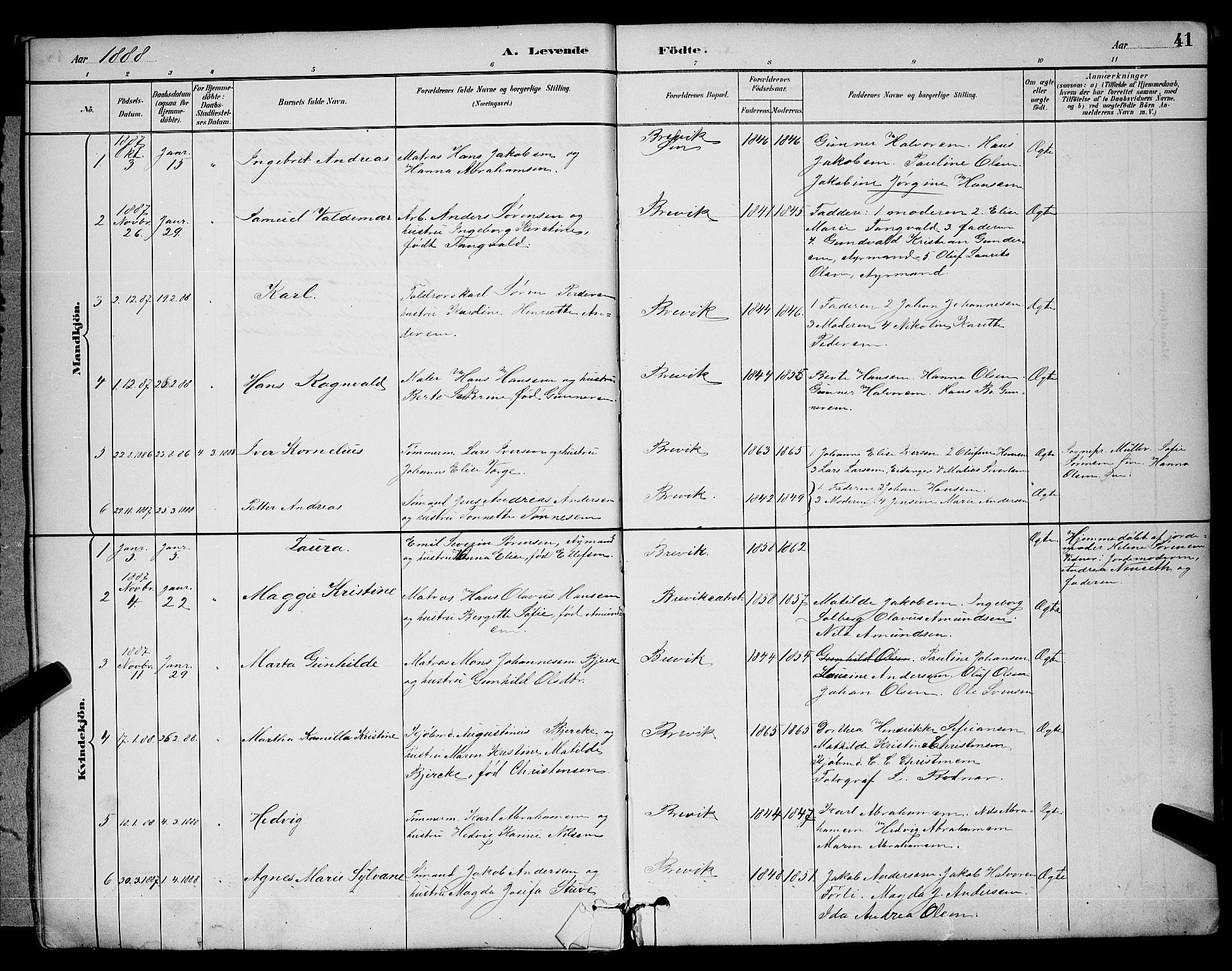 SAKO, Brevik kirkebøker, G/Ga/L0004: Klokkerbok nr. 4, 1882-1900, s. 41