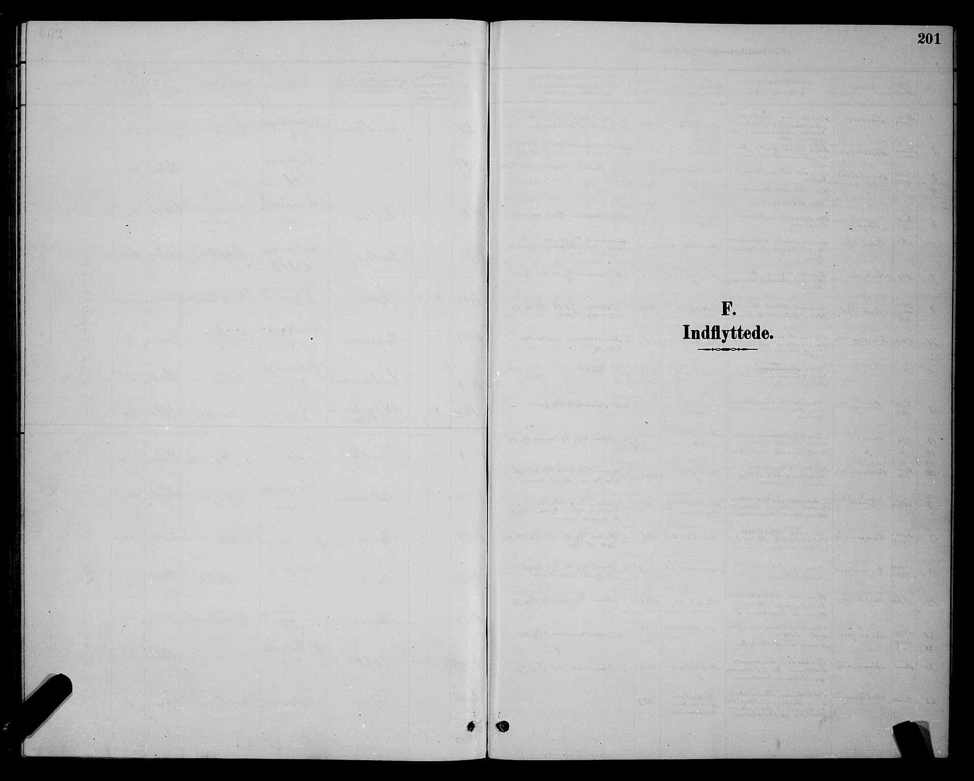 SAT, Ministerialprotokoller, klokkerbøker og fødselsregistre - Sør-Trøndelag, 604/L0223: Klokkerbok nr. 604C06, 1886-1897, s. 201