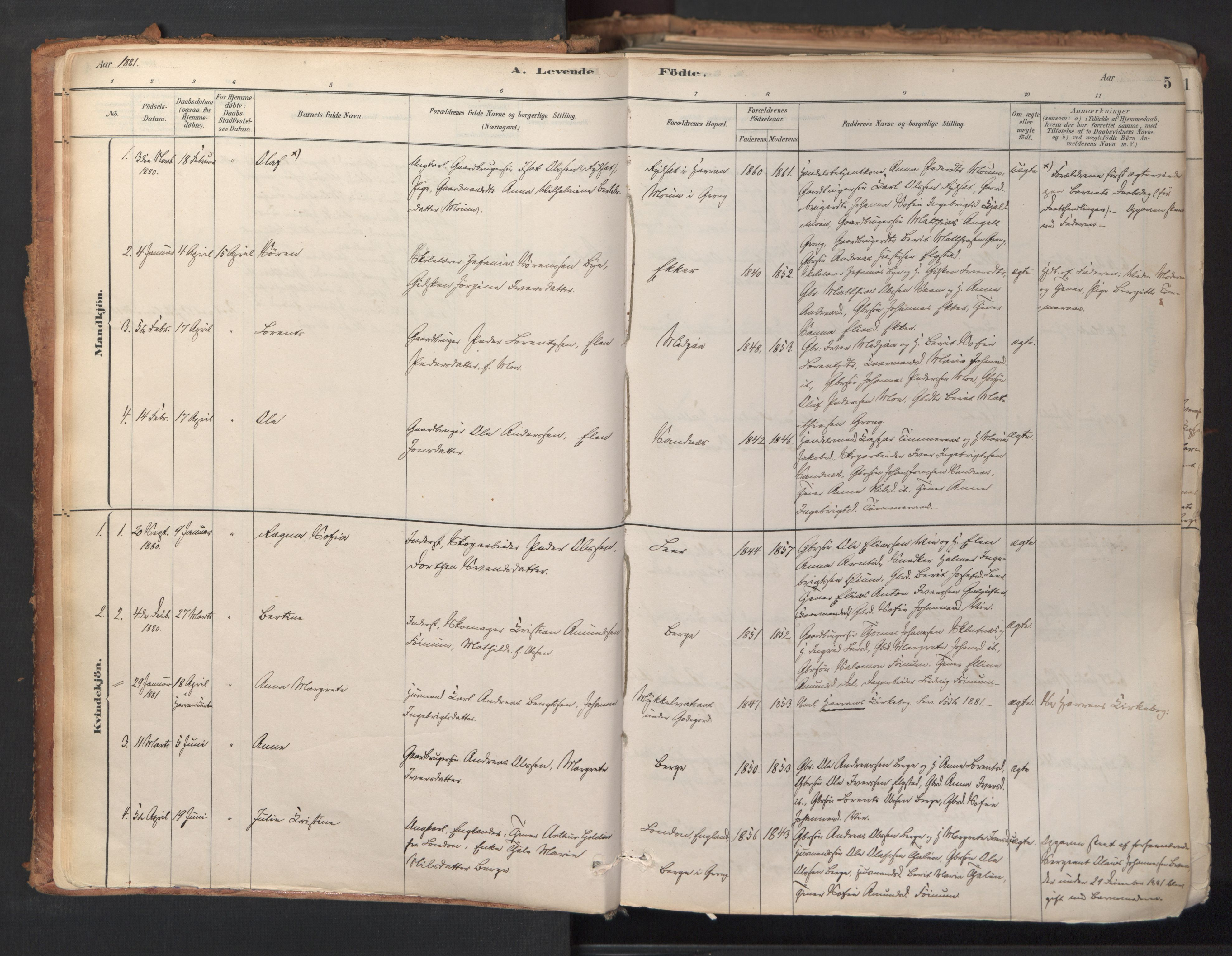 SAT, Ministerialprotokoller, klokkerbøker og fødselsregistre - Nord-Trøndelag, 758/L0519: Ministerialbok nr. 758A04, 1880-1926, s. 5
