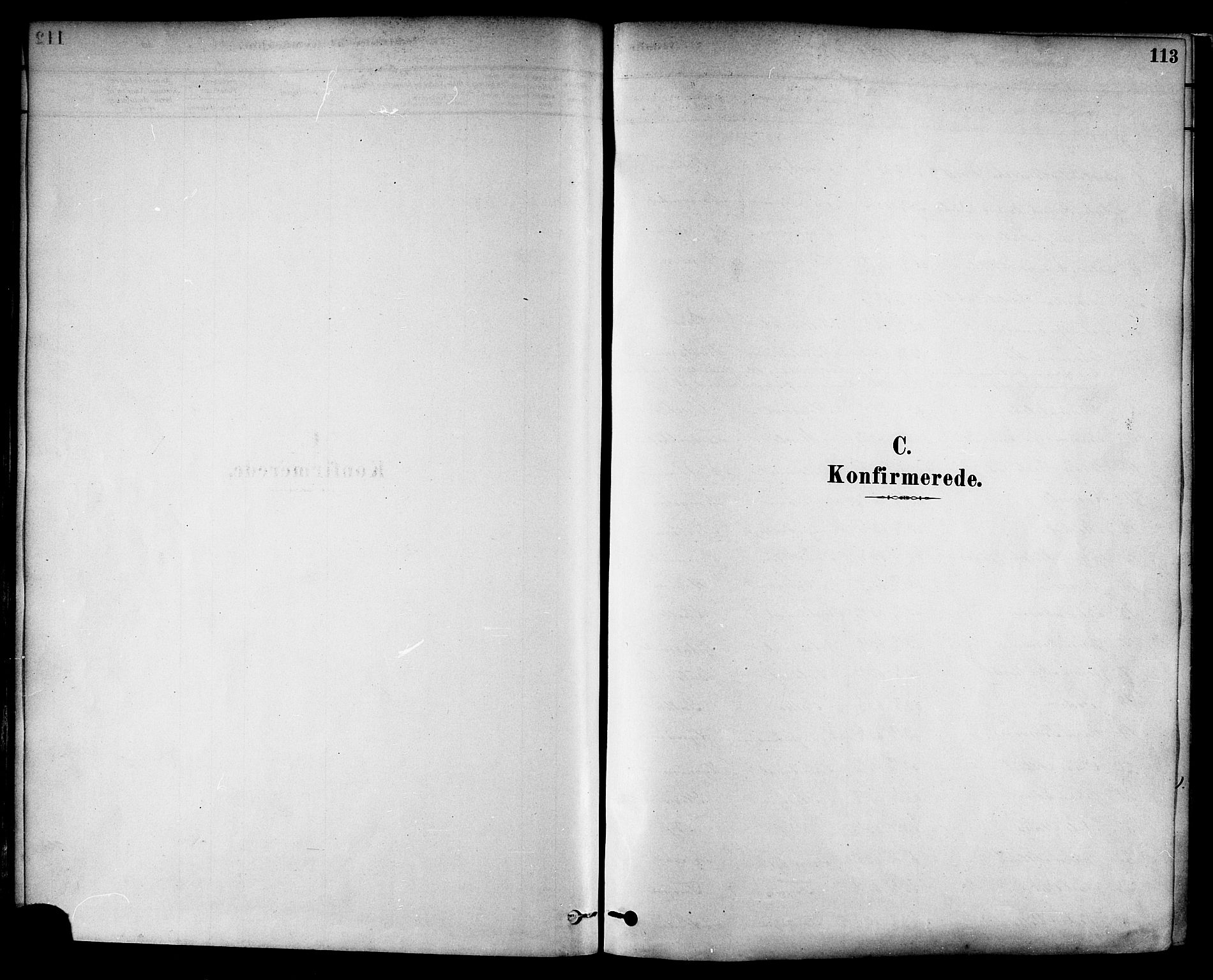 SAT, Ministerialprotokoller, klokkerbøker og fødselsregistre - Nord-Trøndelag, 717/L0159: Ministerialbok nr. 717A09, 1878-1898, s. 113