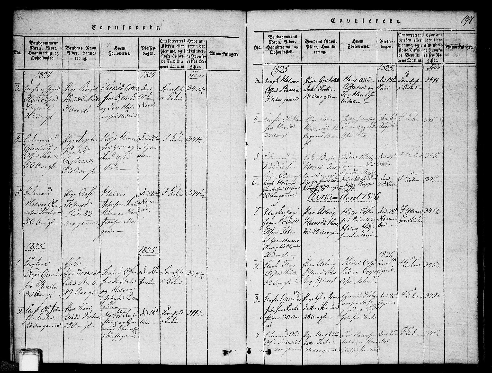 SAKO, Gransherad kirkebøker, G/Gb/L0001: Klokkerbok nr. II 1, 1815-1860, s. 197