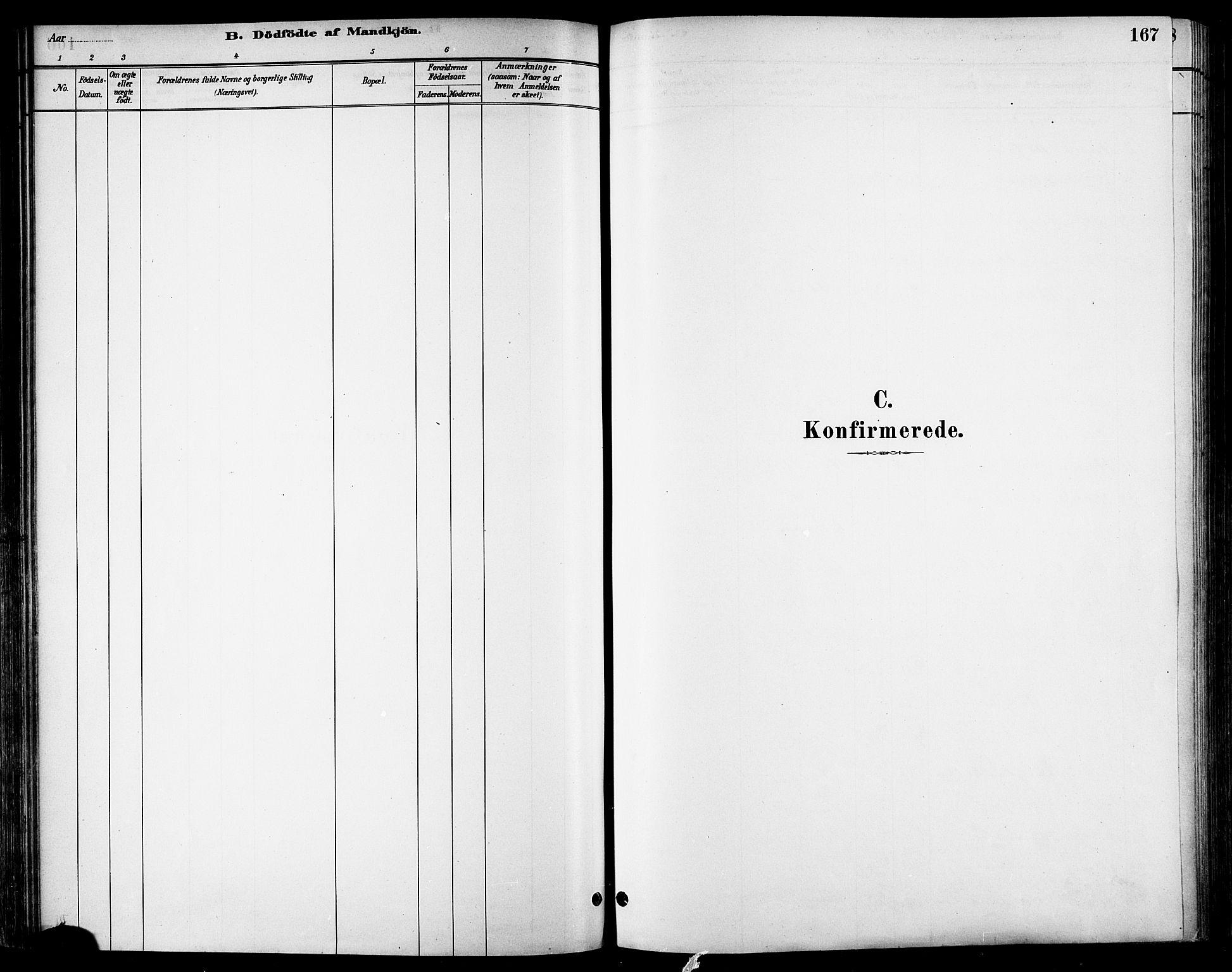 SAT, Ministerialprotokoller, klokkerbøker og fødselsregistre - Sør-Trøndelag, 678/L0901: Ministerialbok nr. 678A10, 1881-1894, s. 167