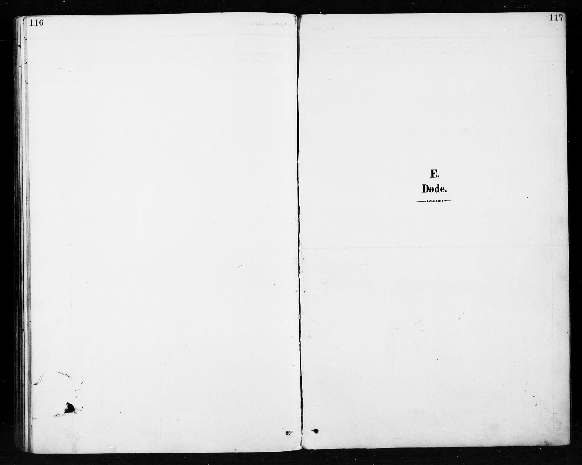 SAH, Etnedal prestekontor, H/Ha/Hab/Habb/L0001: Klokkerbok nr. II 1, 1894-1911, s. 116-117