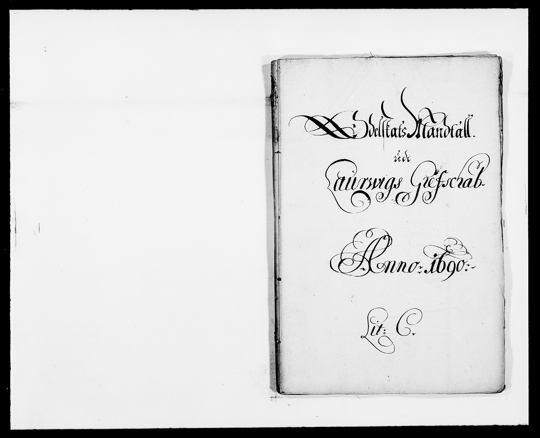 RA, Rentekammeret inntil 1814, Reviderte regnskaper, Fogderegnskap, R33/L1972: Fogderegnskap Larvik grevskap, 1690-1691, s. 60