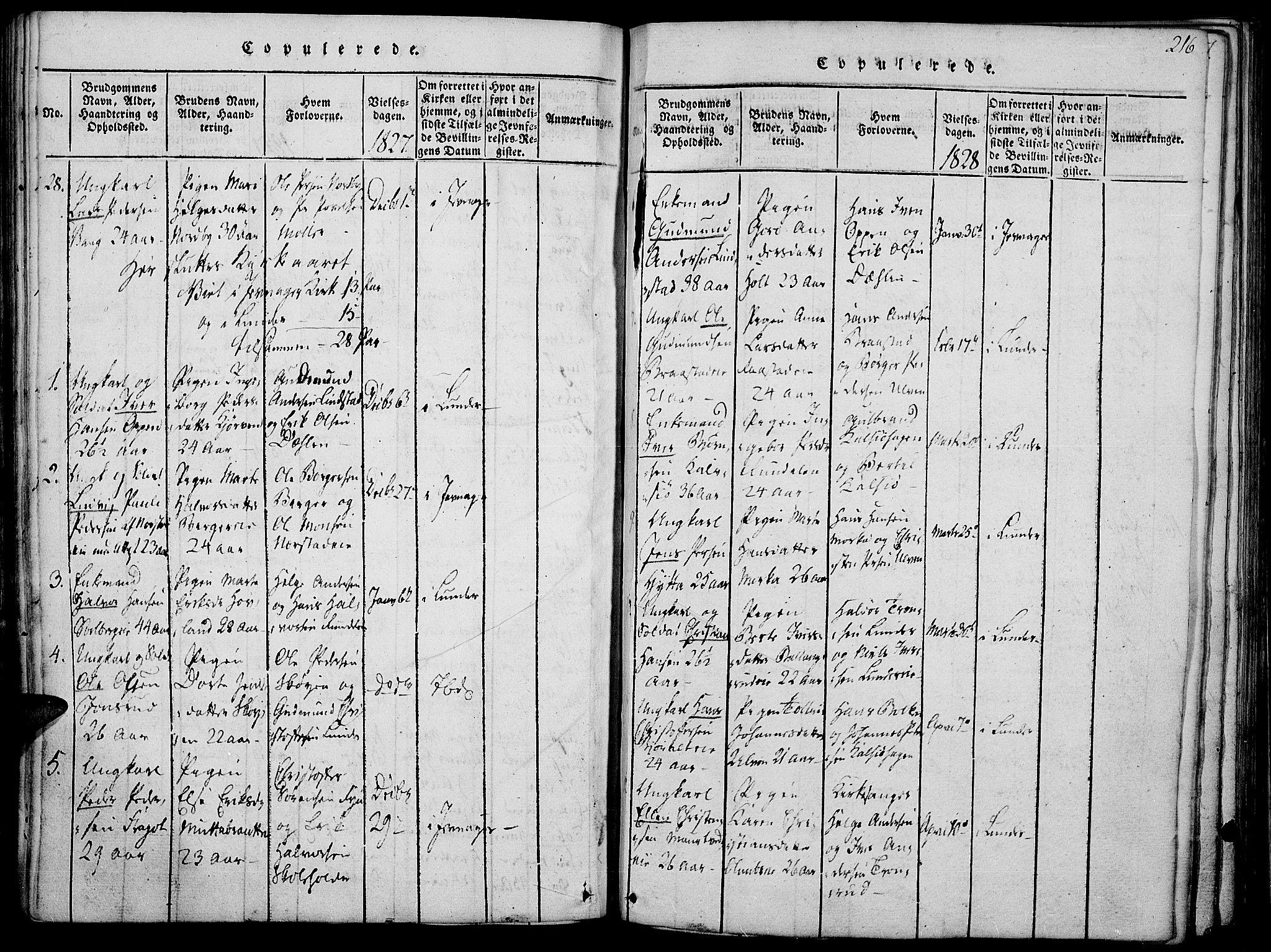SAH, Jevnaker prestekontor, Ministerialbok nr. 5, 1815-1837, s. 216