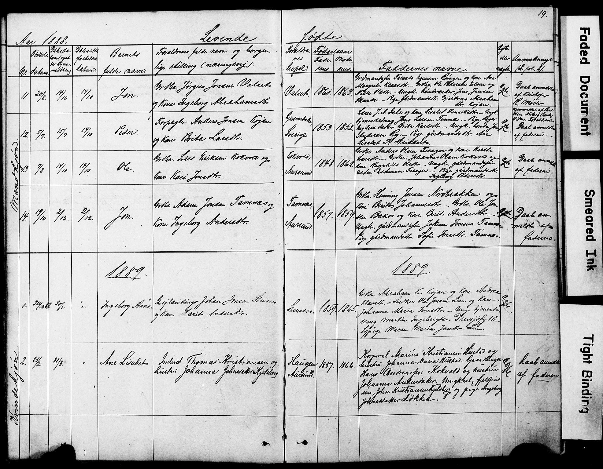 SAT, Ministerialprotokoller, klokkerbøker og fødselsregistre - Sør-Trøndelag, 683/L0949: Klokkerbok nr. 683C01, 1880-1896, s. 19
