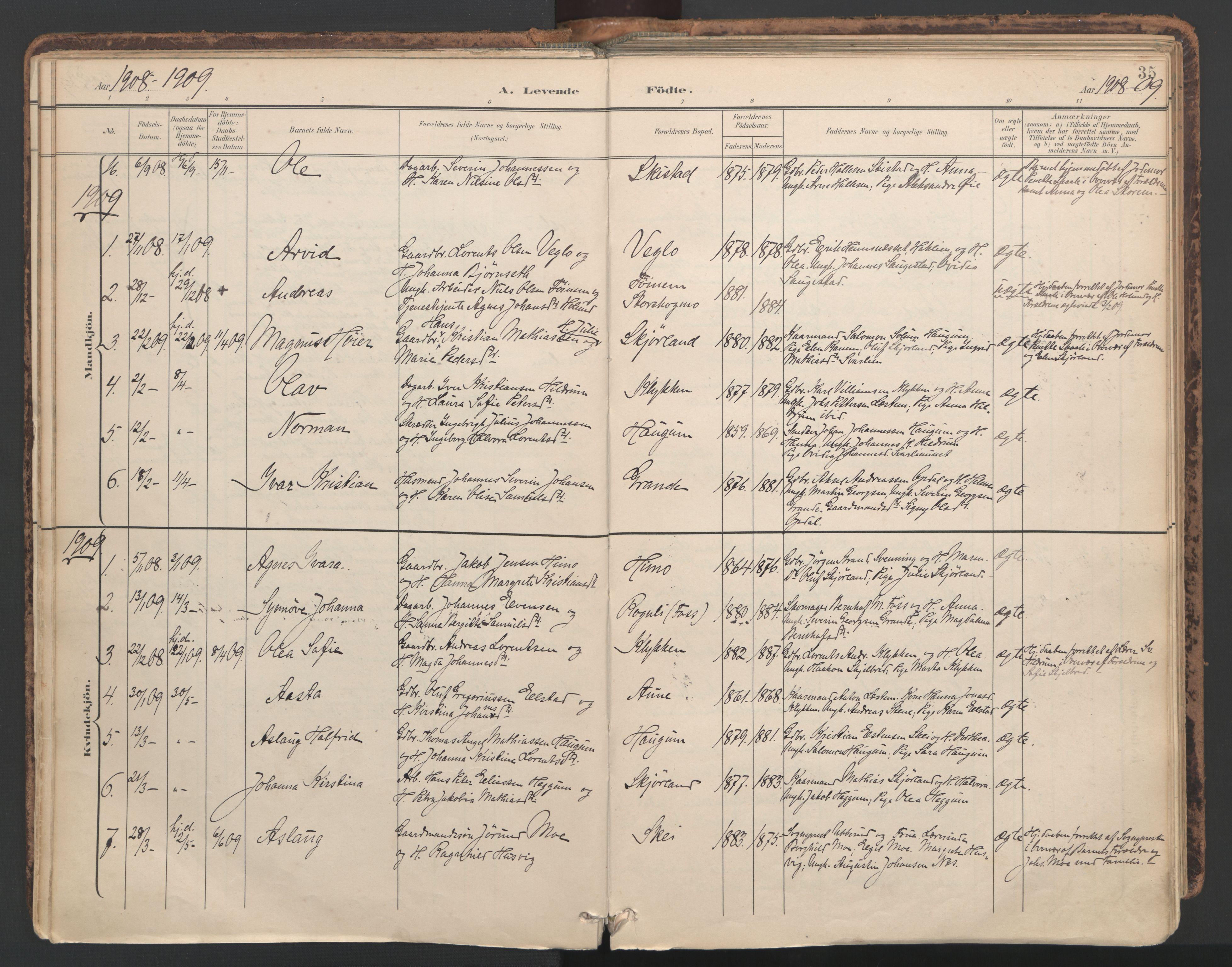 SAT, Ministerialprotokoller, klokkerbøker og fødselsregistre - Nord-Trøndelag, 764/L0556: Ministerialbok nr. 764A11, 1897-1924, s. 35