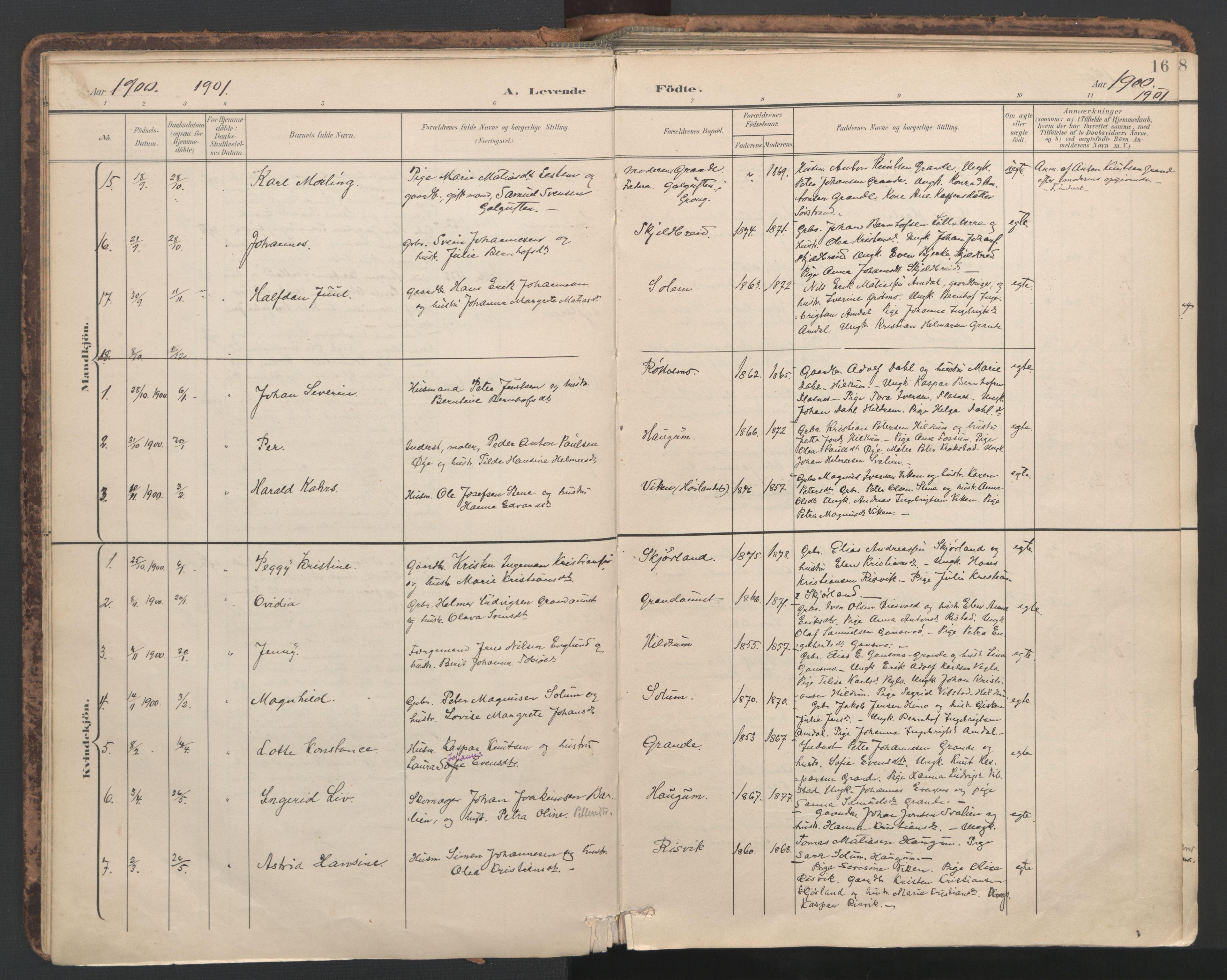 SAT, Ministerialprotokoller, klokkerbøker og fødselsregistre - Nord-Trøndelag, 764/L0556: Ministerialbok nr. 764A11, 1897-1924, s. 16