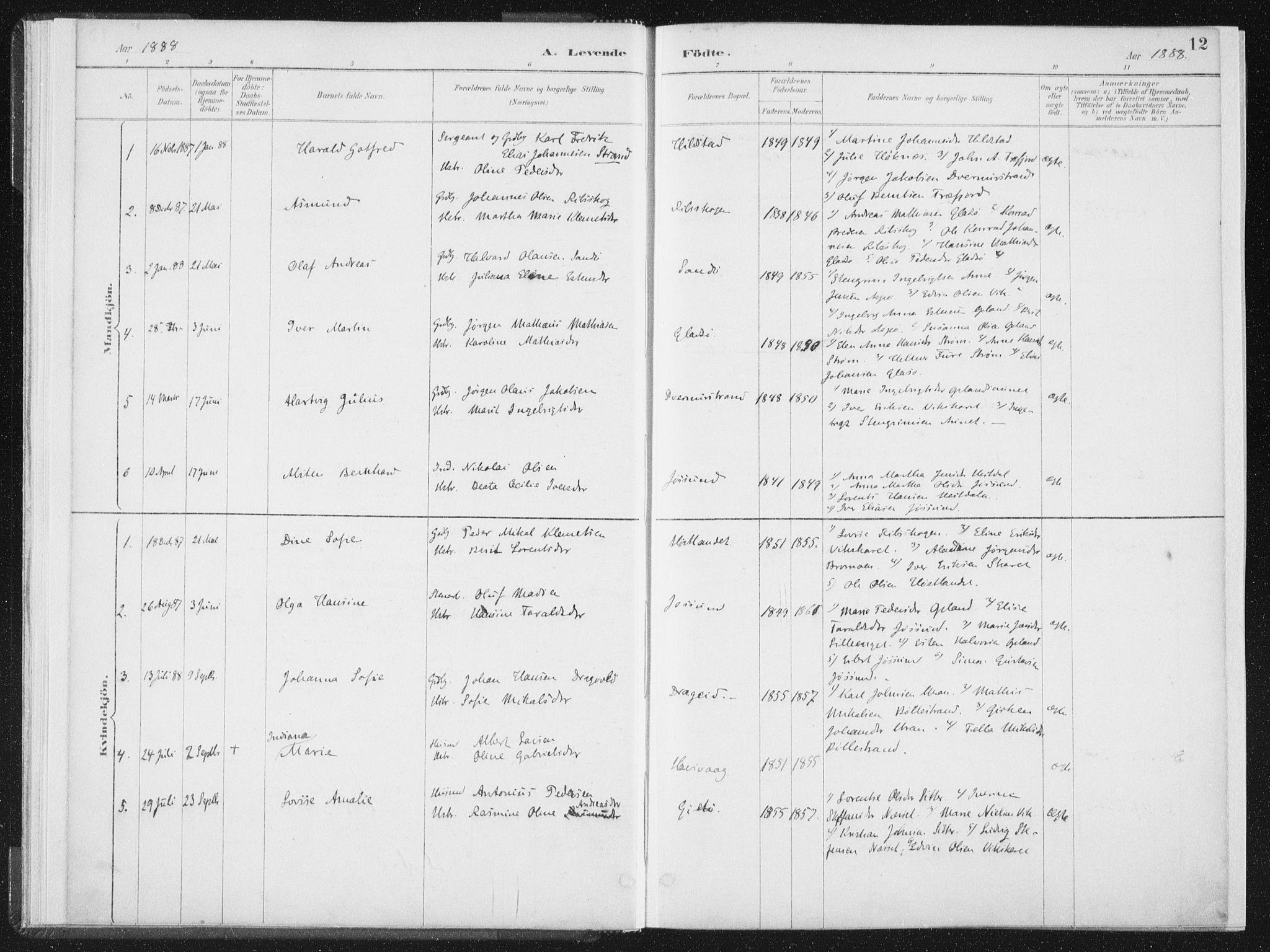 SAT, Ministerialprotokoller, klokkerbøker og fødselsregistre - Nord-Trøndelag, 771/L0597: Ministerialbok nr. 771A04, 1885-1910, s. 12