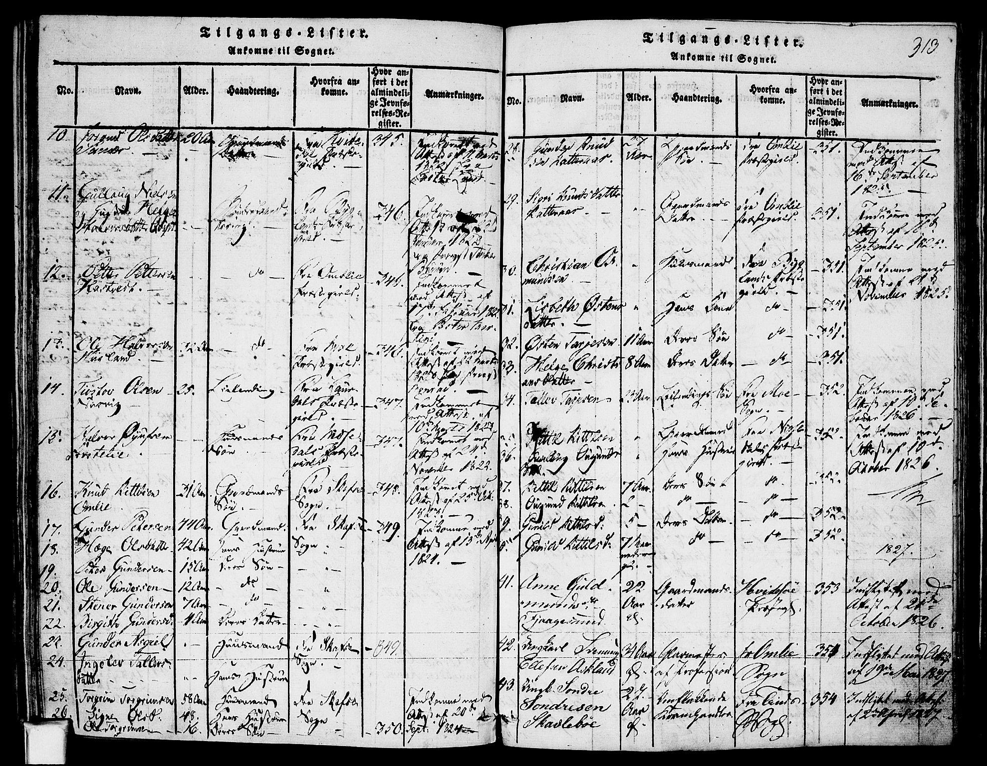 SAKO, Fyresdal kirkebøker, F/Fa/L0003: Ministerialbok nr. I 3, 1815-1840, s. 313