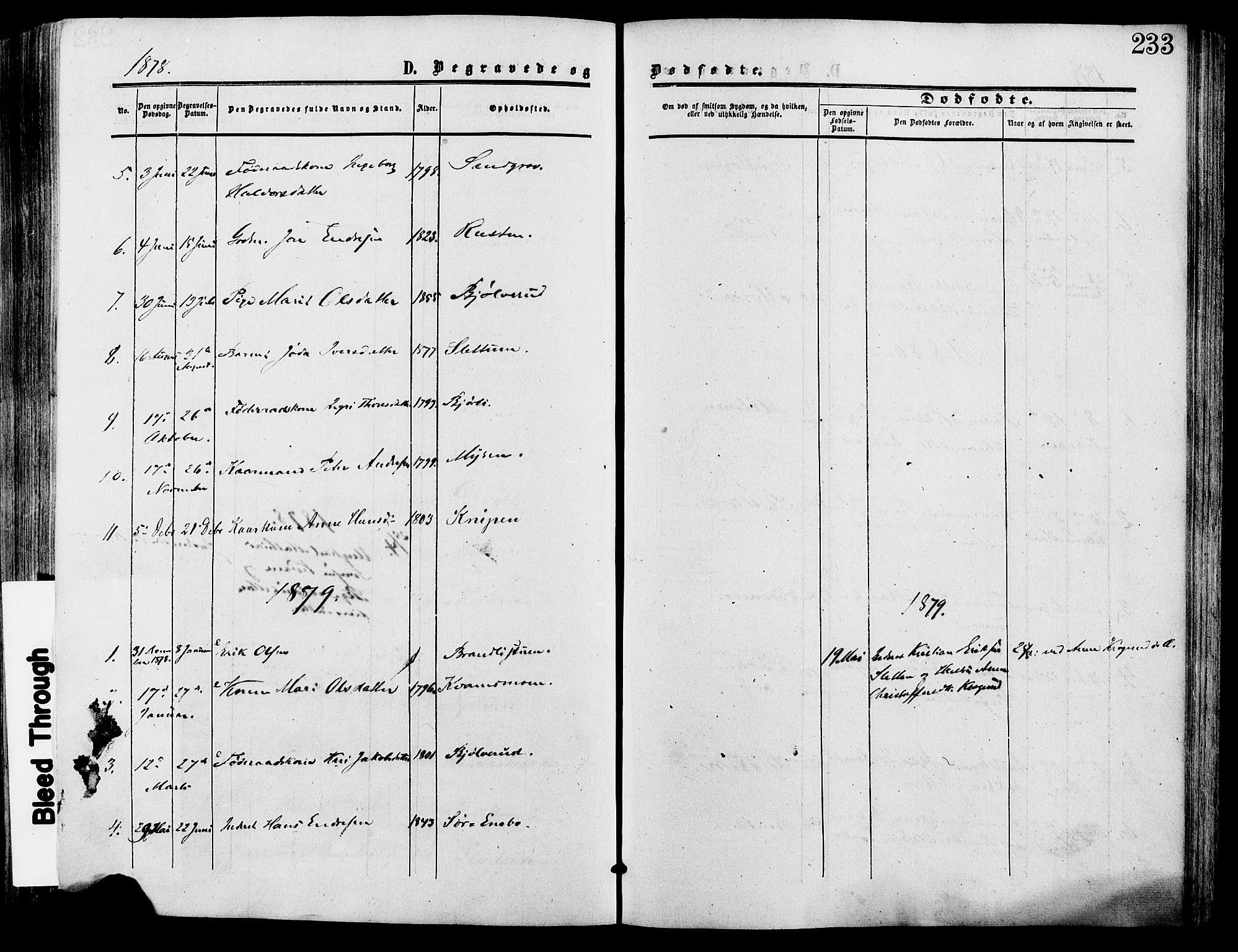 SAH, Lesja prestekontor, Ministerialbok nr. 9, 1854-1889, s. 233