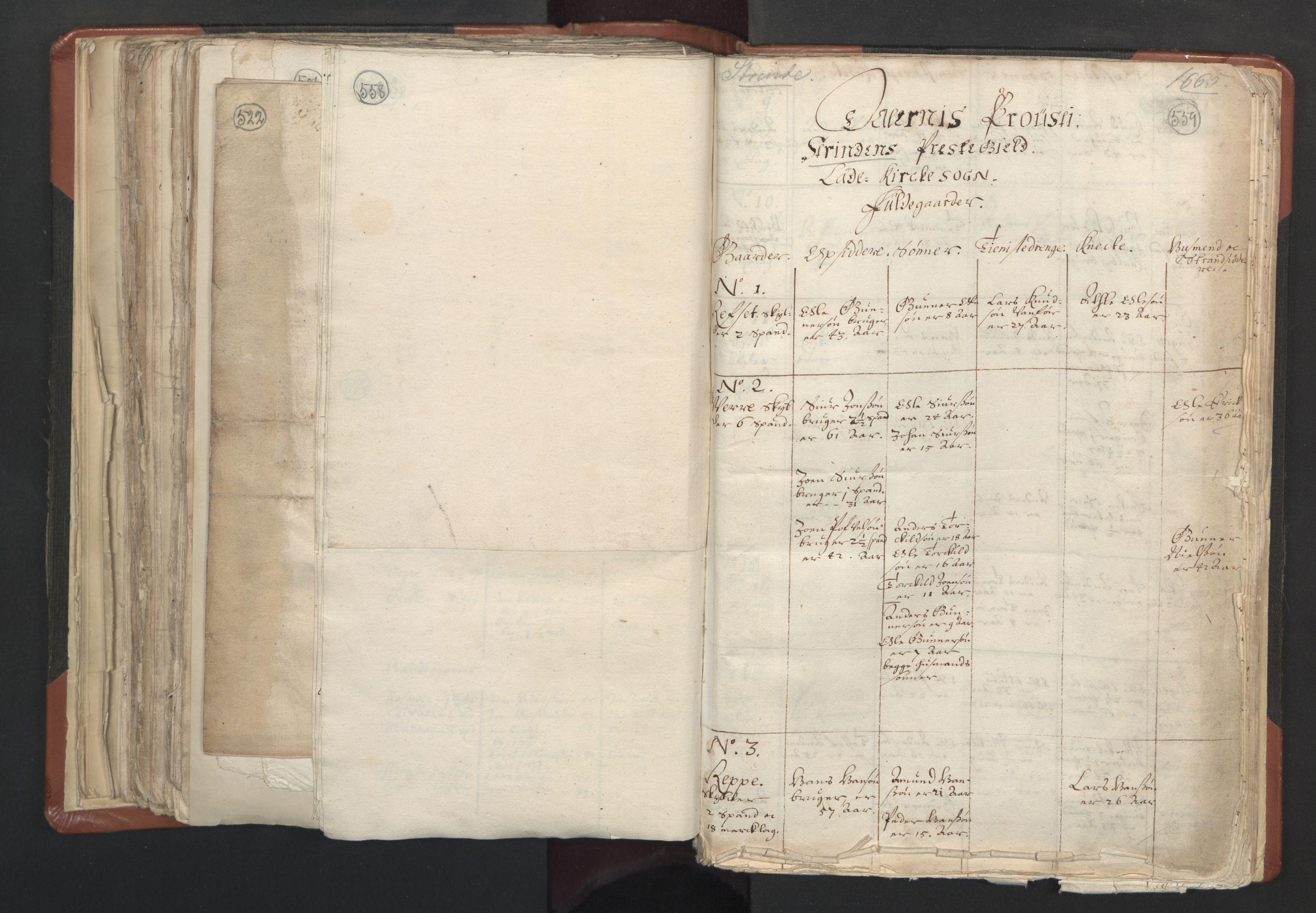 RA, Sogneprestenes manntall 1664-1666, nr. 31: Dalane prosti, 1664-1666, s. 558-559