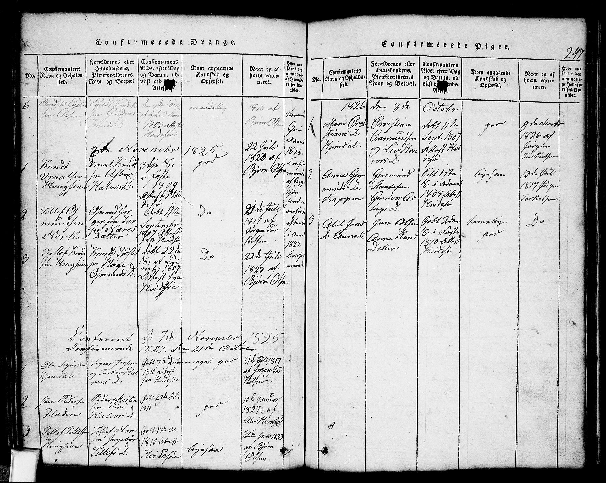 SAKO, Nissedal kirkebøker, G/Gb/L0001: Klokkerbok nr. II 1, 1814-1862, s. 247