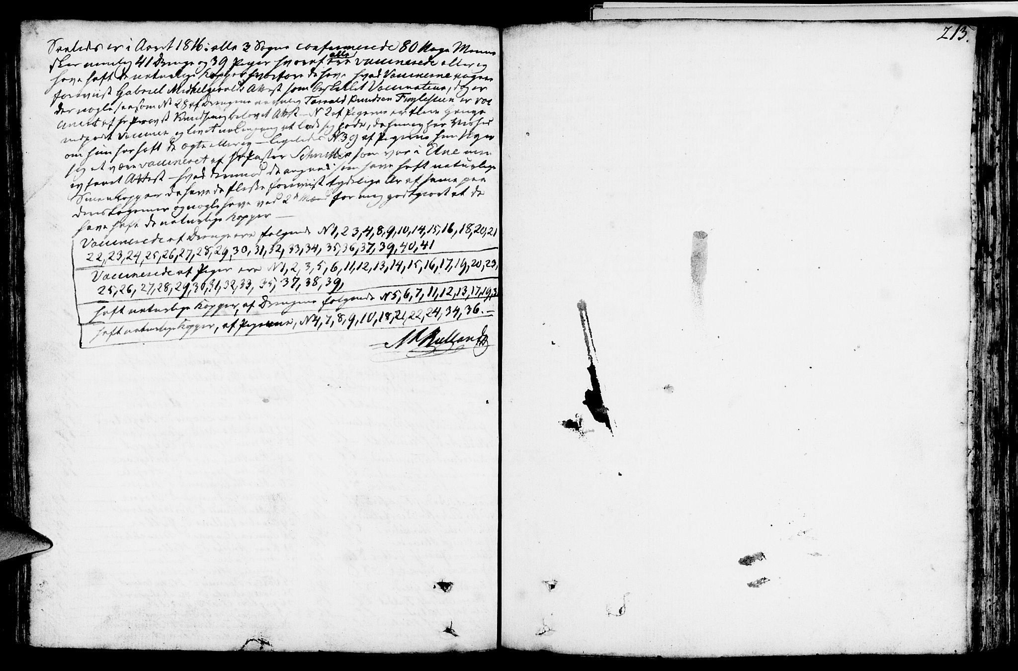 SAST, Vikedal sokneprestkontor, IV: Ministerialbok nr. A 2, 1779-1817, s. 213