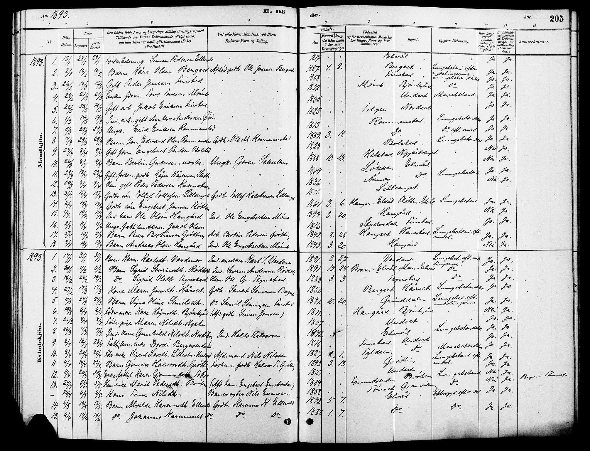 SAH, Rendalen prestekontor, H/Ha/Hab/L0003: Klokkerbok nr. 3, 1879-1904, s. 205