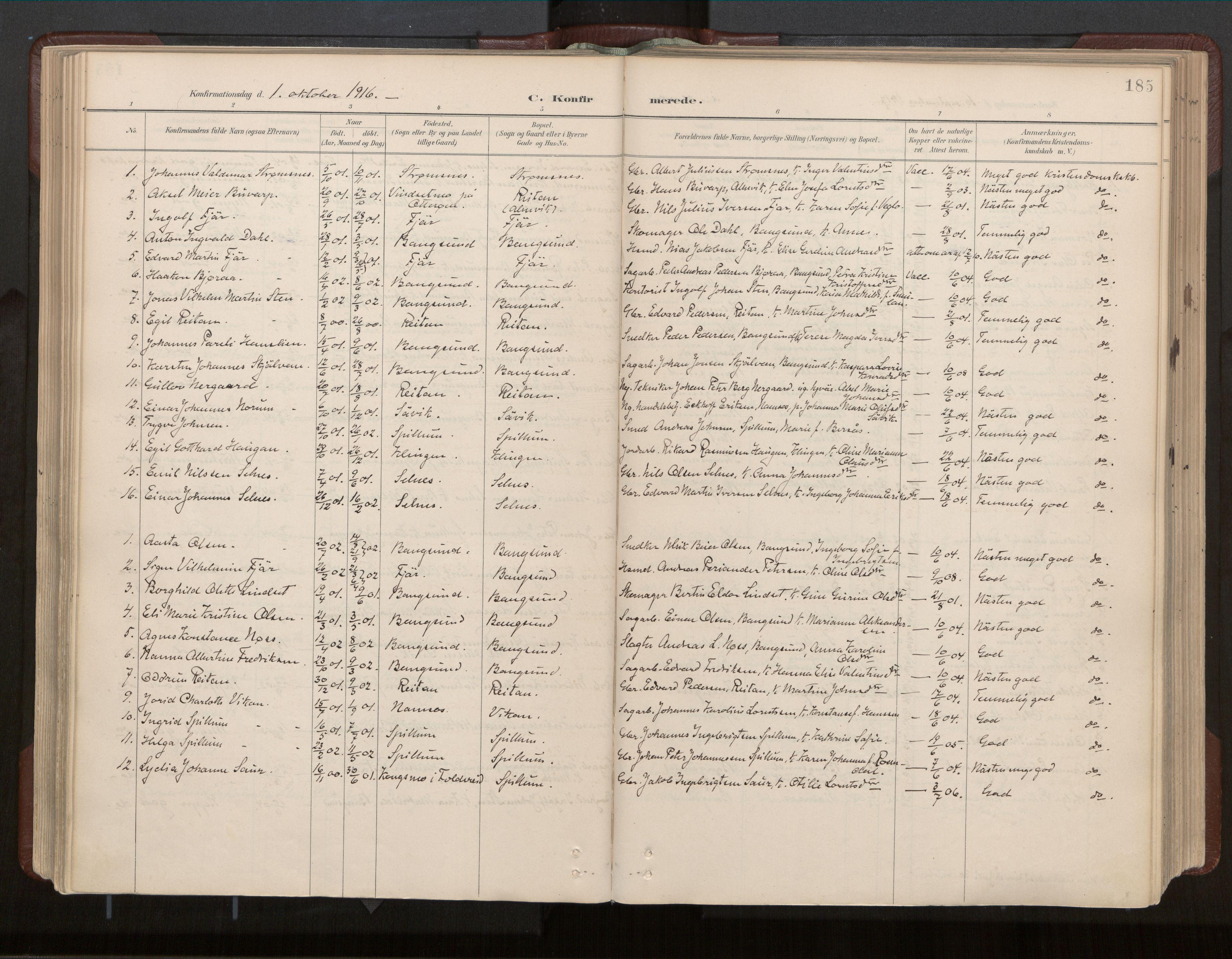 SAT, Ministerialprotokoller, klokkerbøker og fødselsregistre - Nord-Trøndelag, 770/L0589: Ministerialbok nr. 770A03, 1887-1929, s. 185