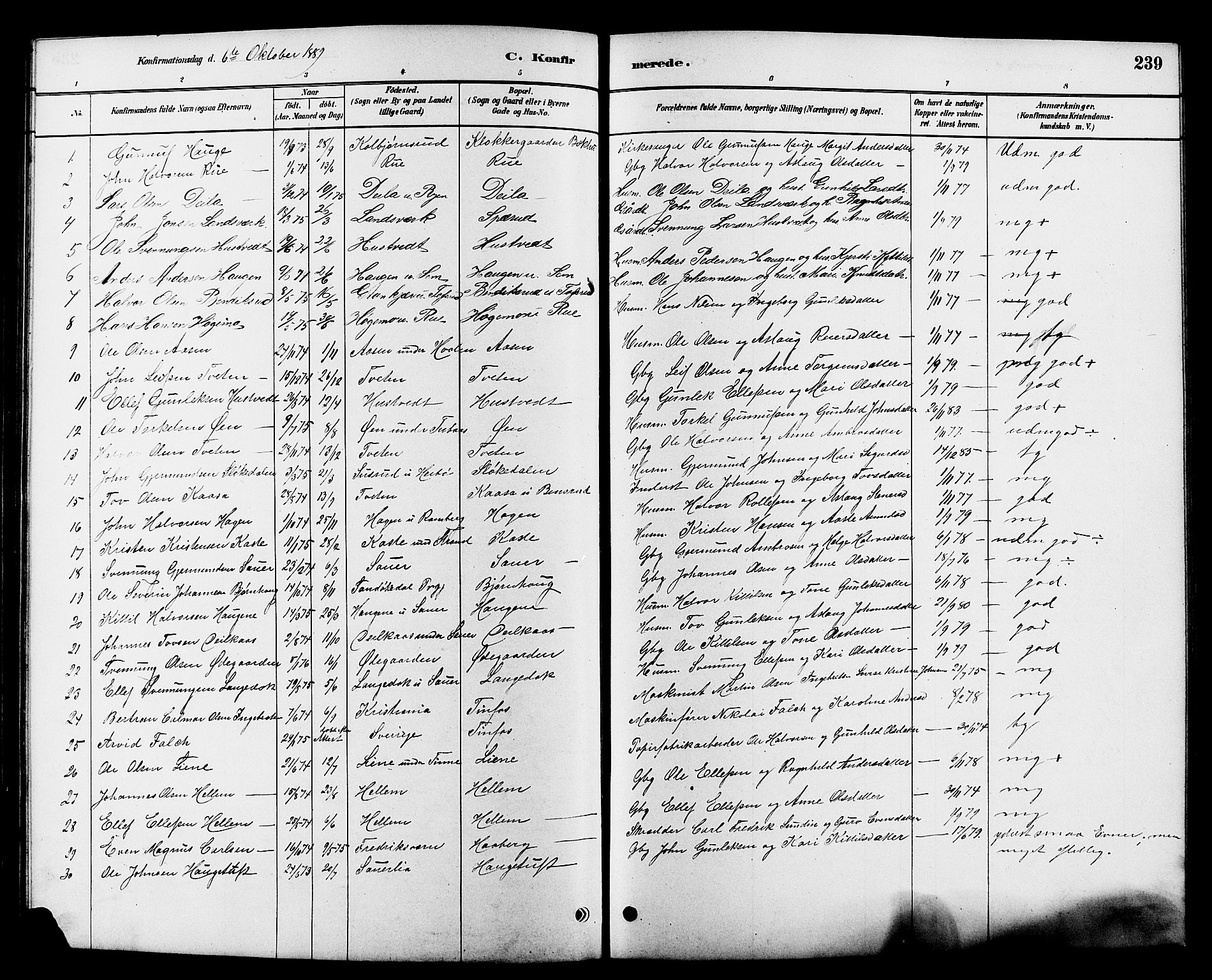SAKO, Heddal kirkebøker, G/Ga/L0002: Klokkerbok nr. I 2, 1879-1908, s. 239