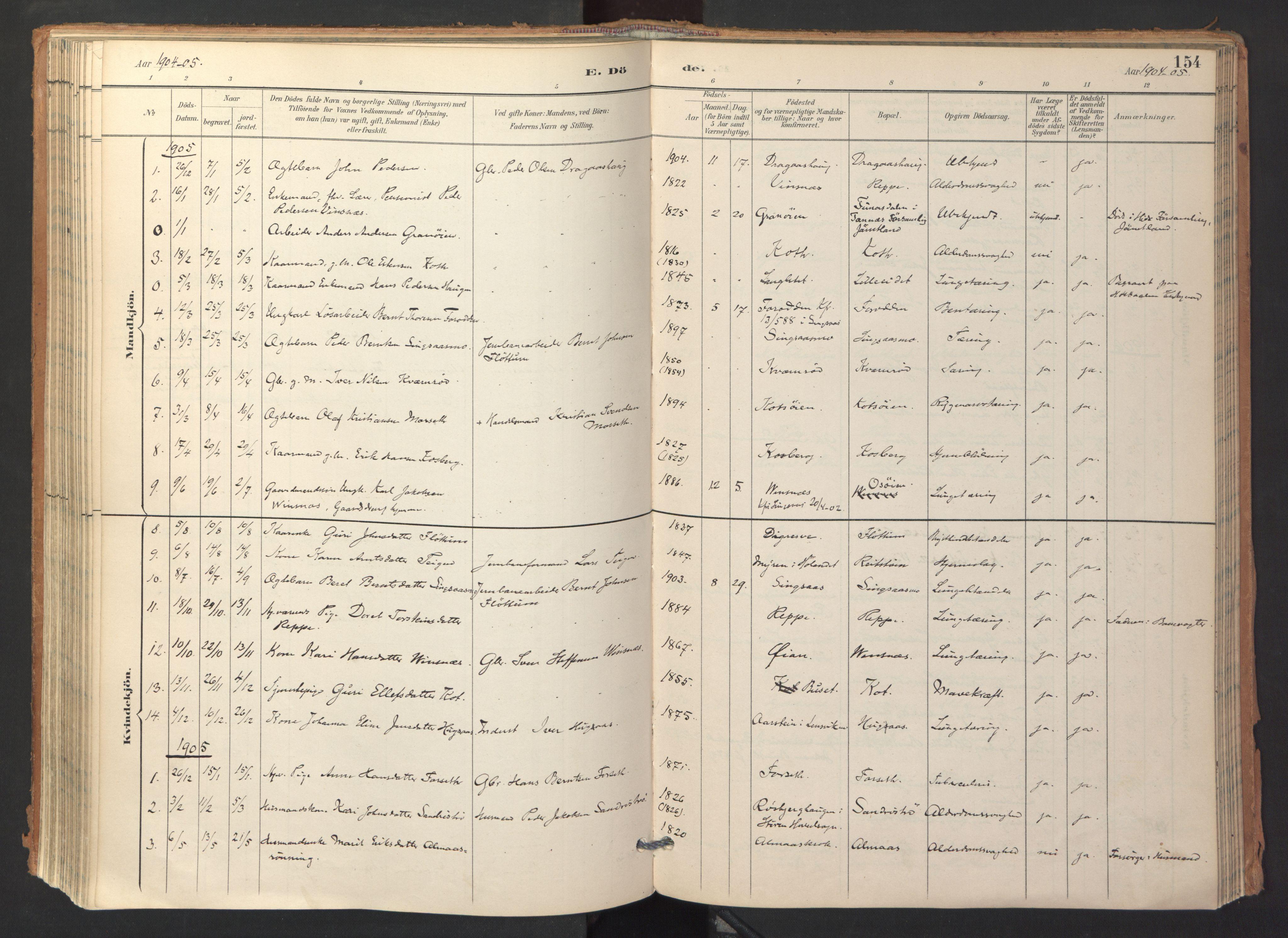 SAT, Ministerialprotokoller, klokkerbøker og fødselsregistre - Sør-Trøndelag, 688/L1025: Ministerialbok nr. 688A02, 1891-1909, s. 154
