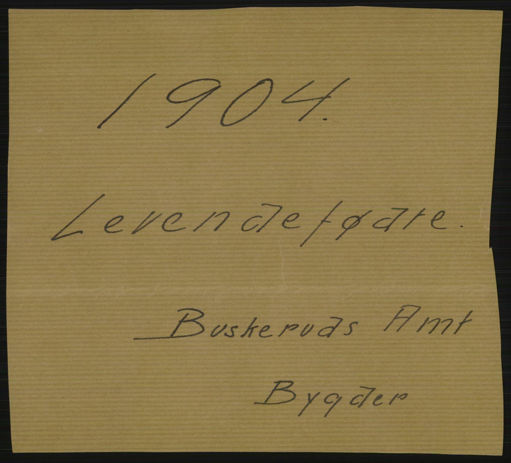 RA, Statistisk sentralbyrå, Sosiodemografiske emner, Befolkning, D/Df/Dfa/Dfab/L0007: Buskerud amt: Fødte, gifte, døde, 1904