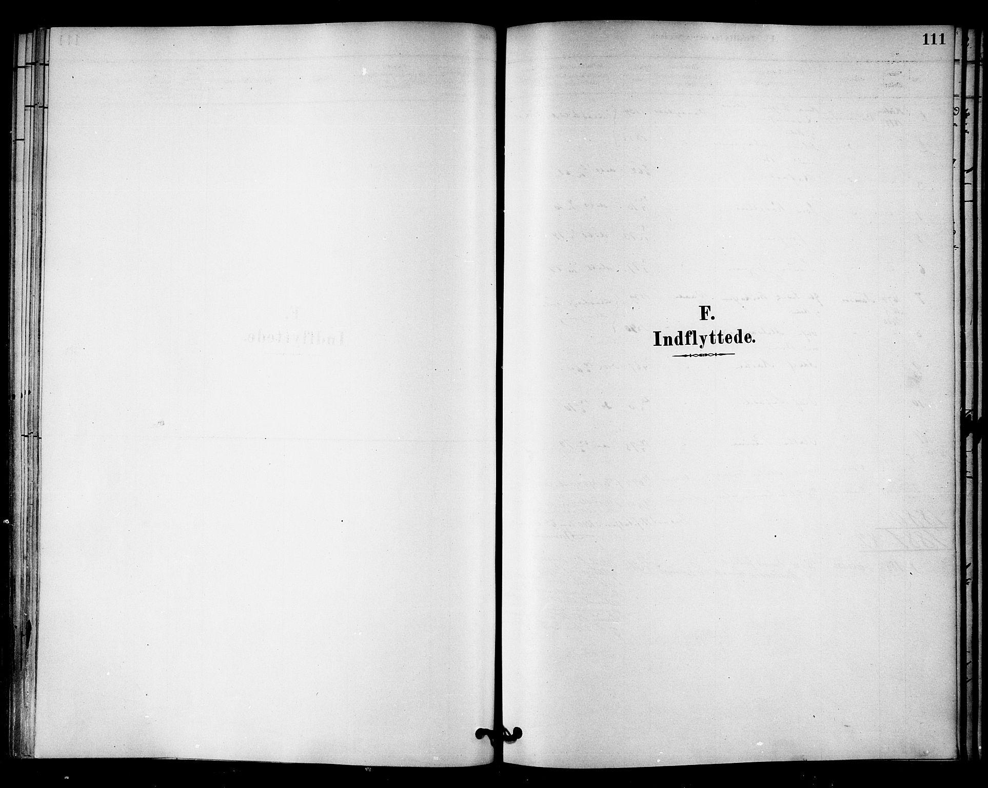 SAT, Ministerialprotokoller, klokkerbøker og fødselsregistre - Nord-Trøndelag, 745/L0429: Ministerialbok nr. 745A01, 1878-1894, s. 111