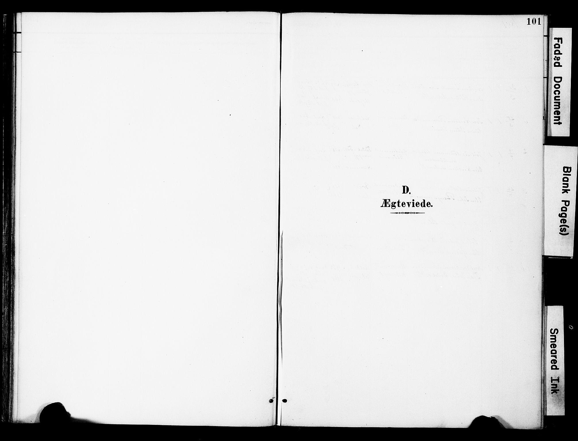 SAT, Ministerialprotokoller, klokkerbøker og fødselsregistre - Nord-Trøndelag, 742/L0409: Ministerialbok nr. 742A02, 1891-1905, s. 101