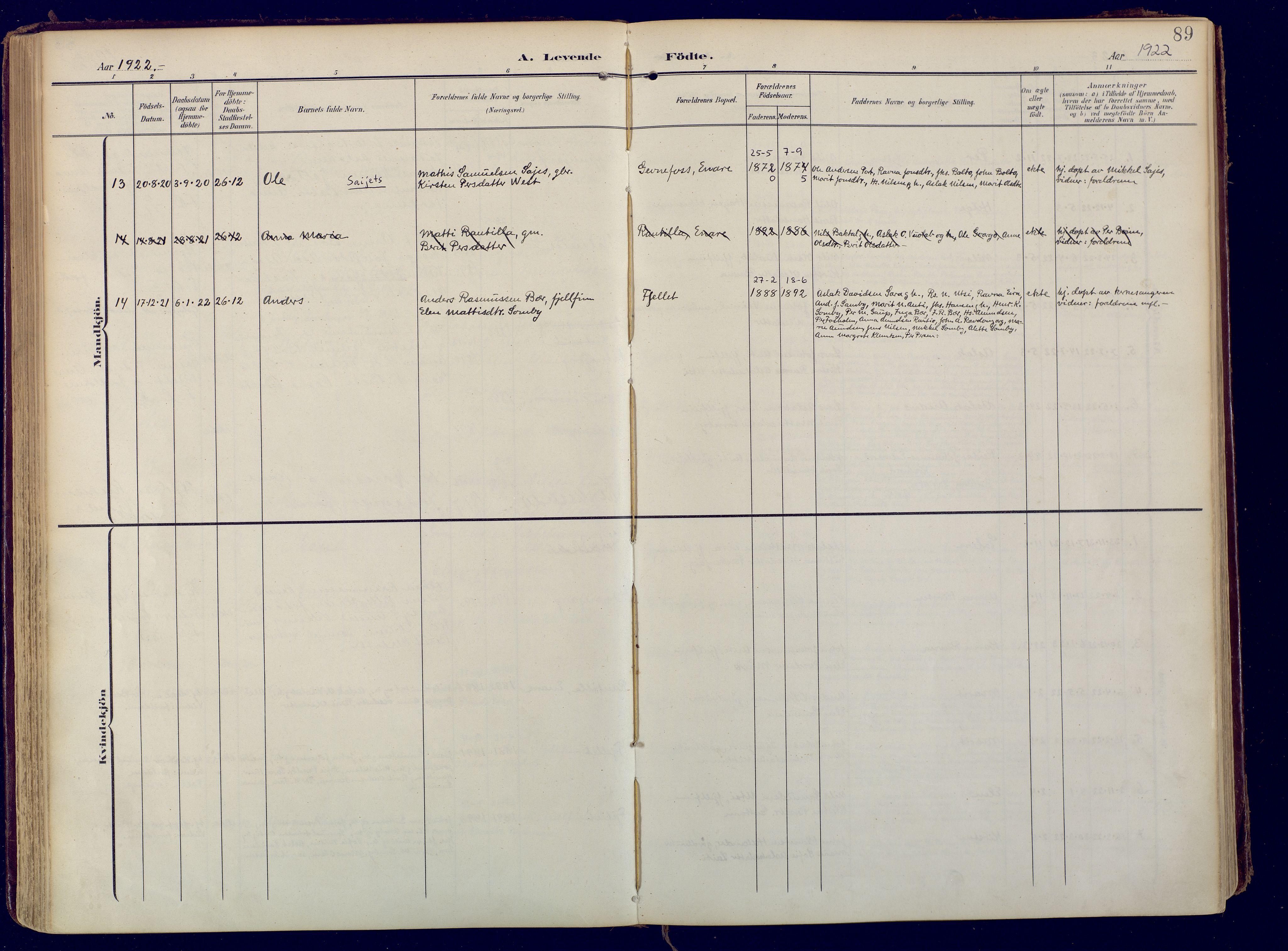 SATØ, Karasjok sokneprestkontor, H/Ha: Ministerialbok nr. 3, 1907-1926, s. 89