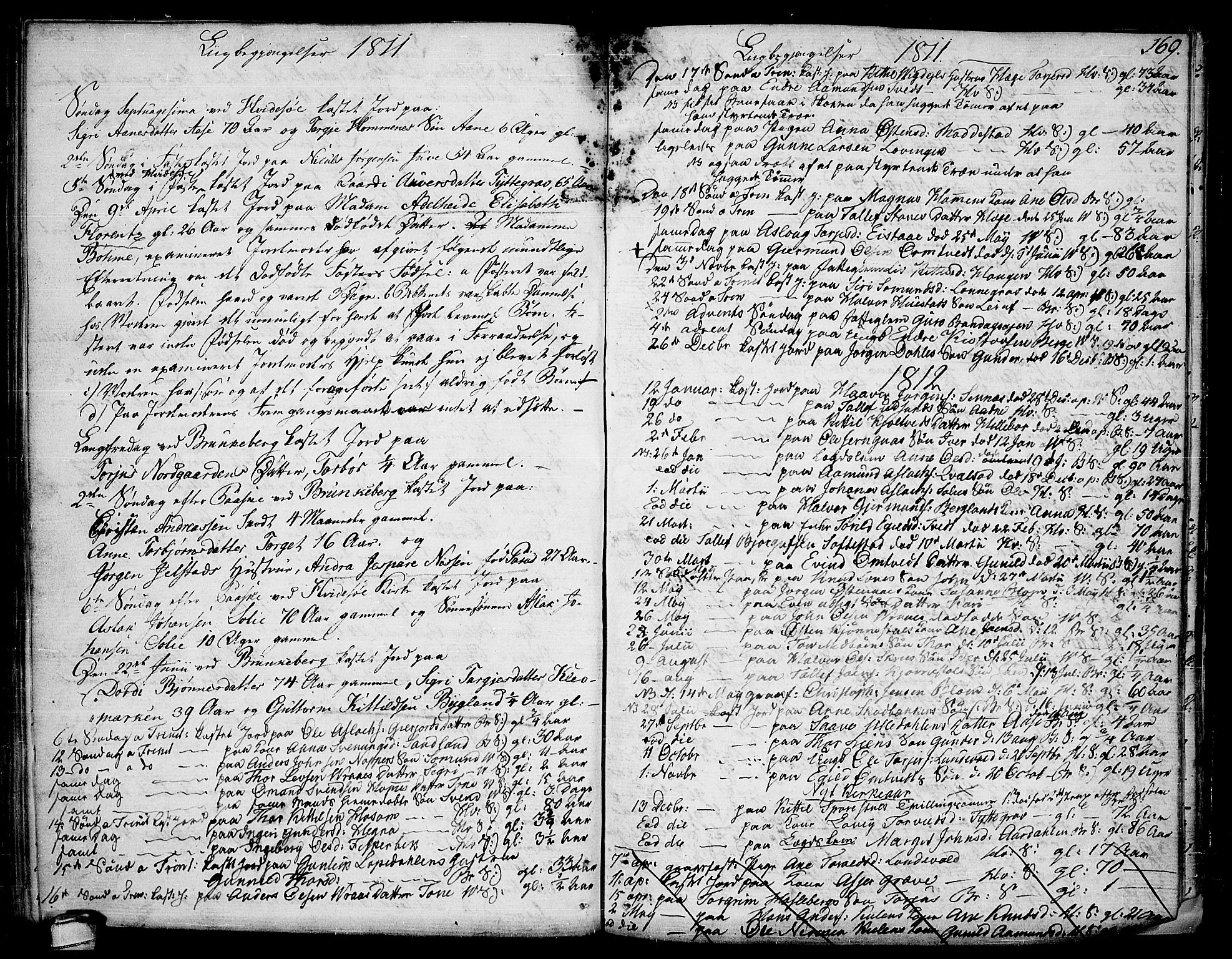 SAKO, Kviteseid kirkebøker, F/Fa/L0004: Ministerialbok nr. I 4, 1800-1814, s. 169