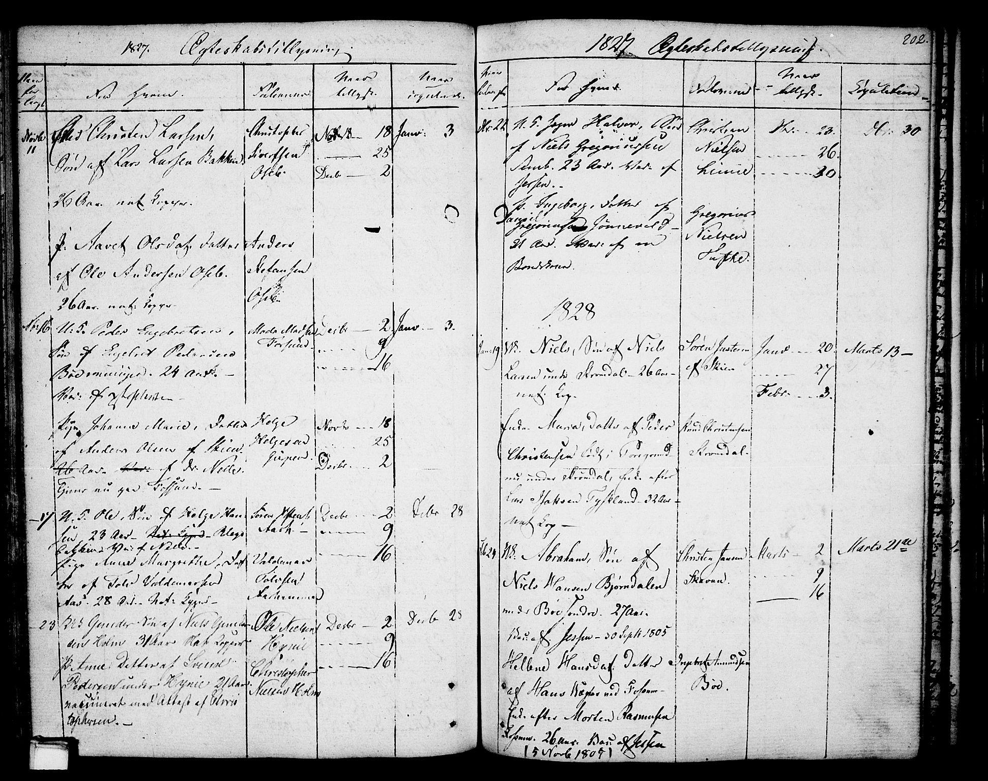 SAKO, Gjerpen kirkebøker, F/Fa/L0003: Ministerialbok nr. 3, 1796-1814, s. 202