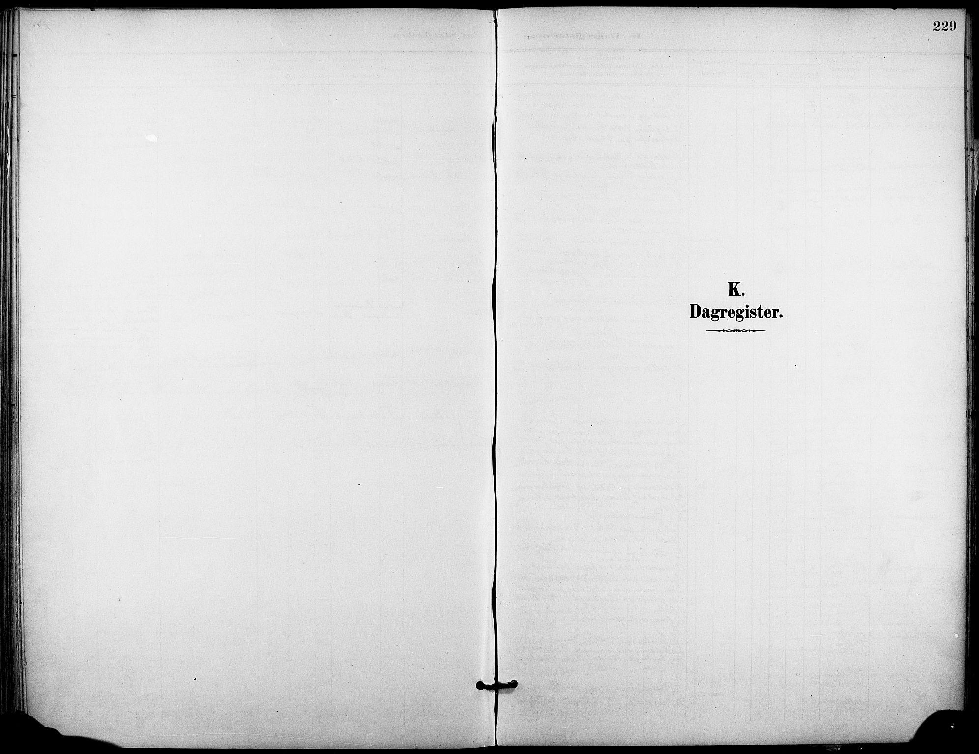 SAKO, Holla kirkebøker, F/Fa/L0010: Ministerialbok nr. 10, 1897-1907, s. 229