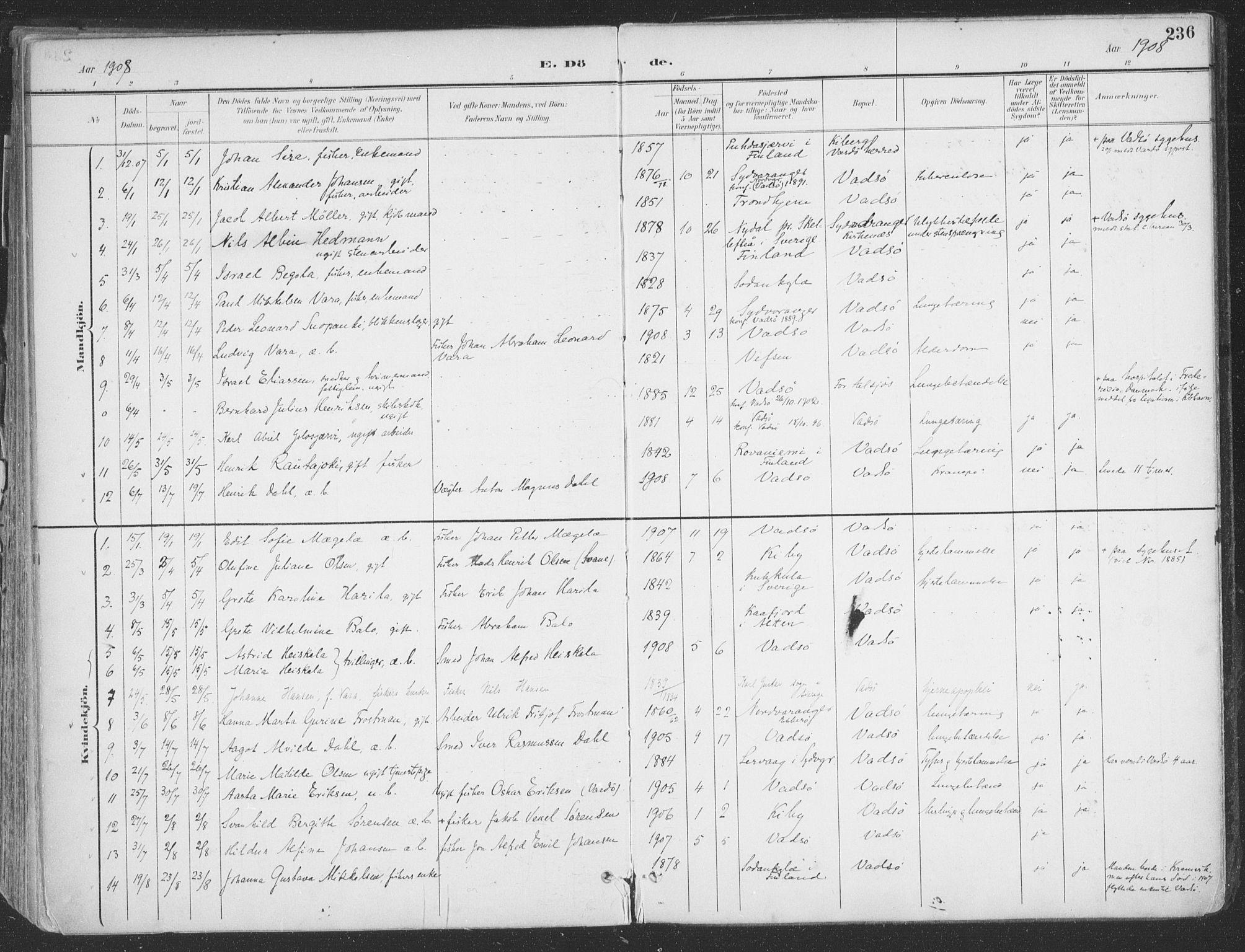 SATØ, Vadsø sokneprestkontor, H/Ha/L0007kirke: Ministerialbok nr. 7, 1896-1916, s. 236