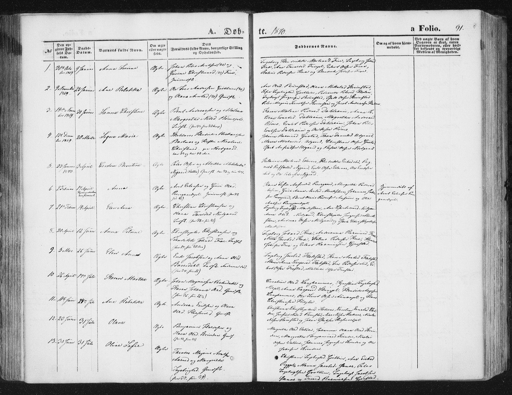 SAT, Ministerialprotokoller, klokkerbøker og fødselsregistre - Nord-Trøndelag, 746/L0447: Ministerialbok nr. 746A06, 1860-1877, s. 91