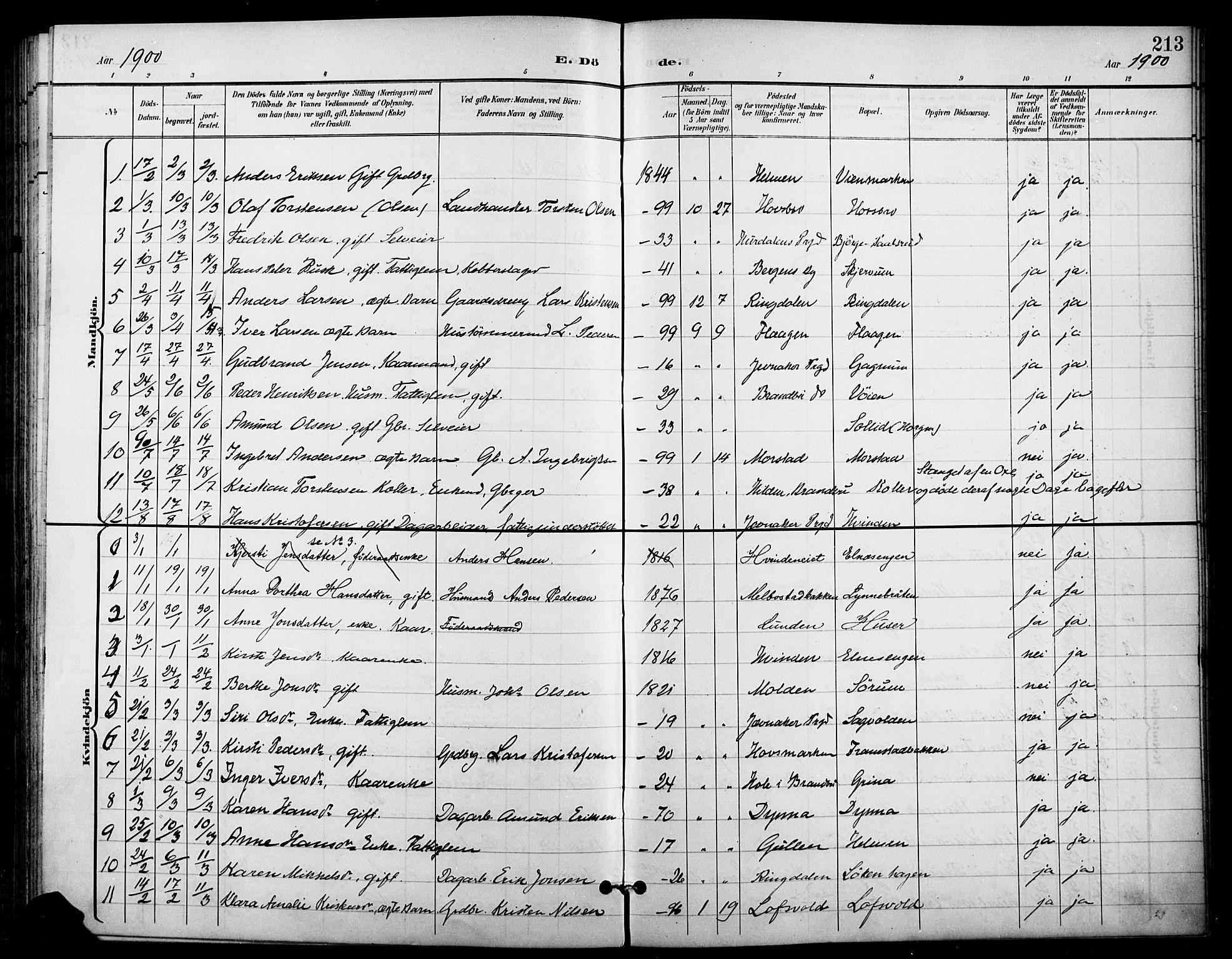 SAH, Gran prestekontor, Ministerialbok nr. 19, 1898-1907, s. 213