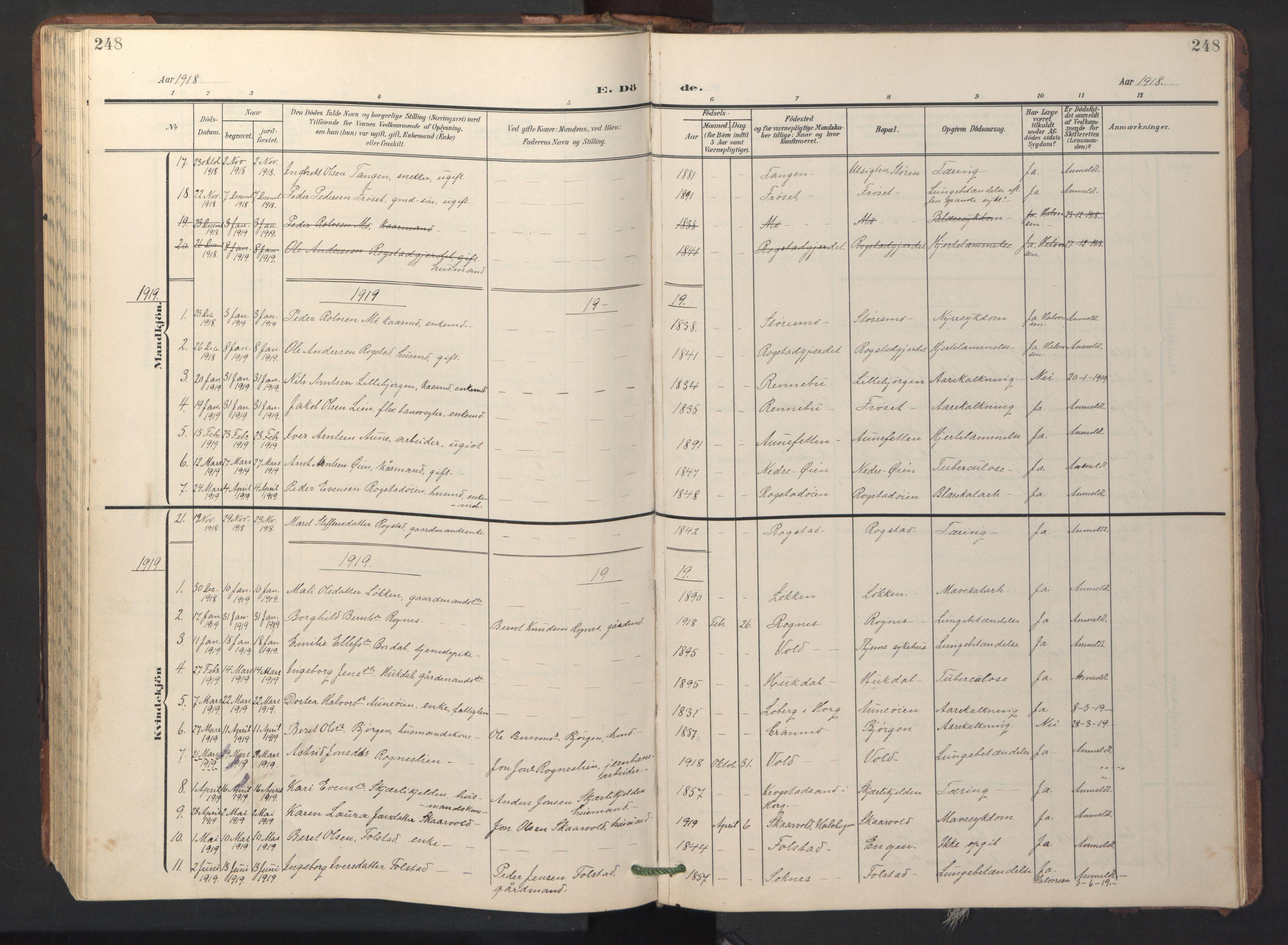 SAT, Ministerialprotokoller, klokkerbøker og fødselsregistre - Sør-Trøndelag, 687/L1019: Klokkerbok nr. 687C03, 1904-1931, s. 248
