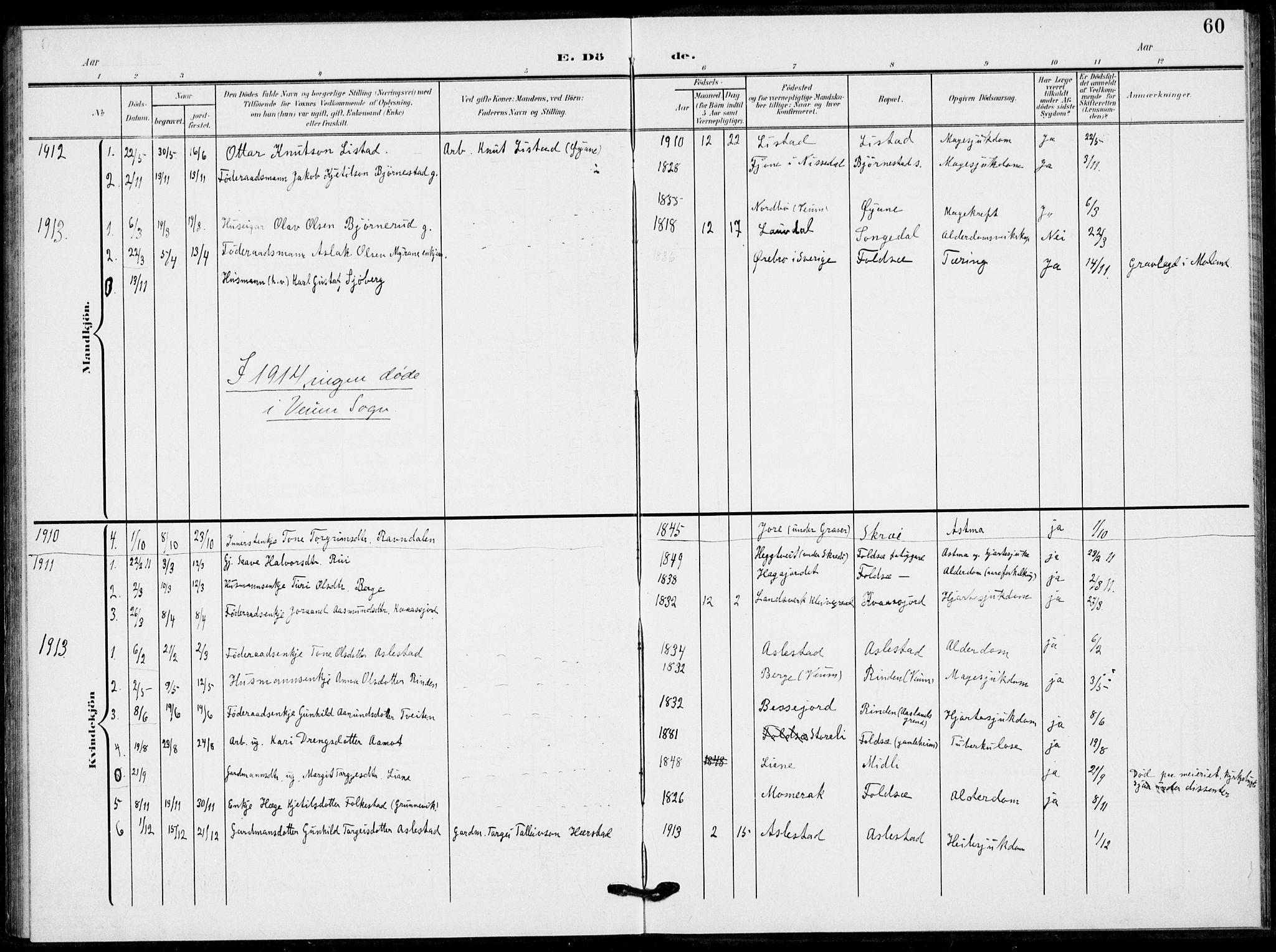 SAKO, Fyresdal kirkebøker, F/Fb/L0004: Ministerialbok nr. II 4, 1903-1920, s. 60