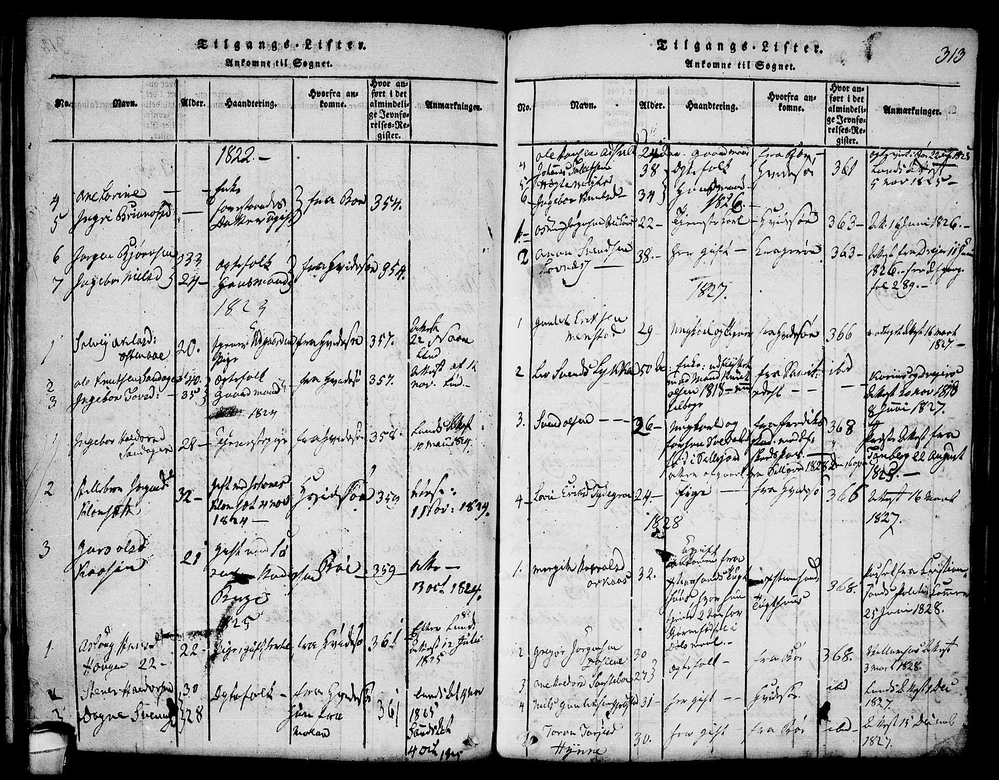 SAKO, Seljord kirkebøker, F/Fa/L0010: Ministerialbok nr. I 10, 1815-1831, s. 313