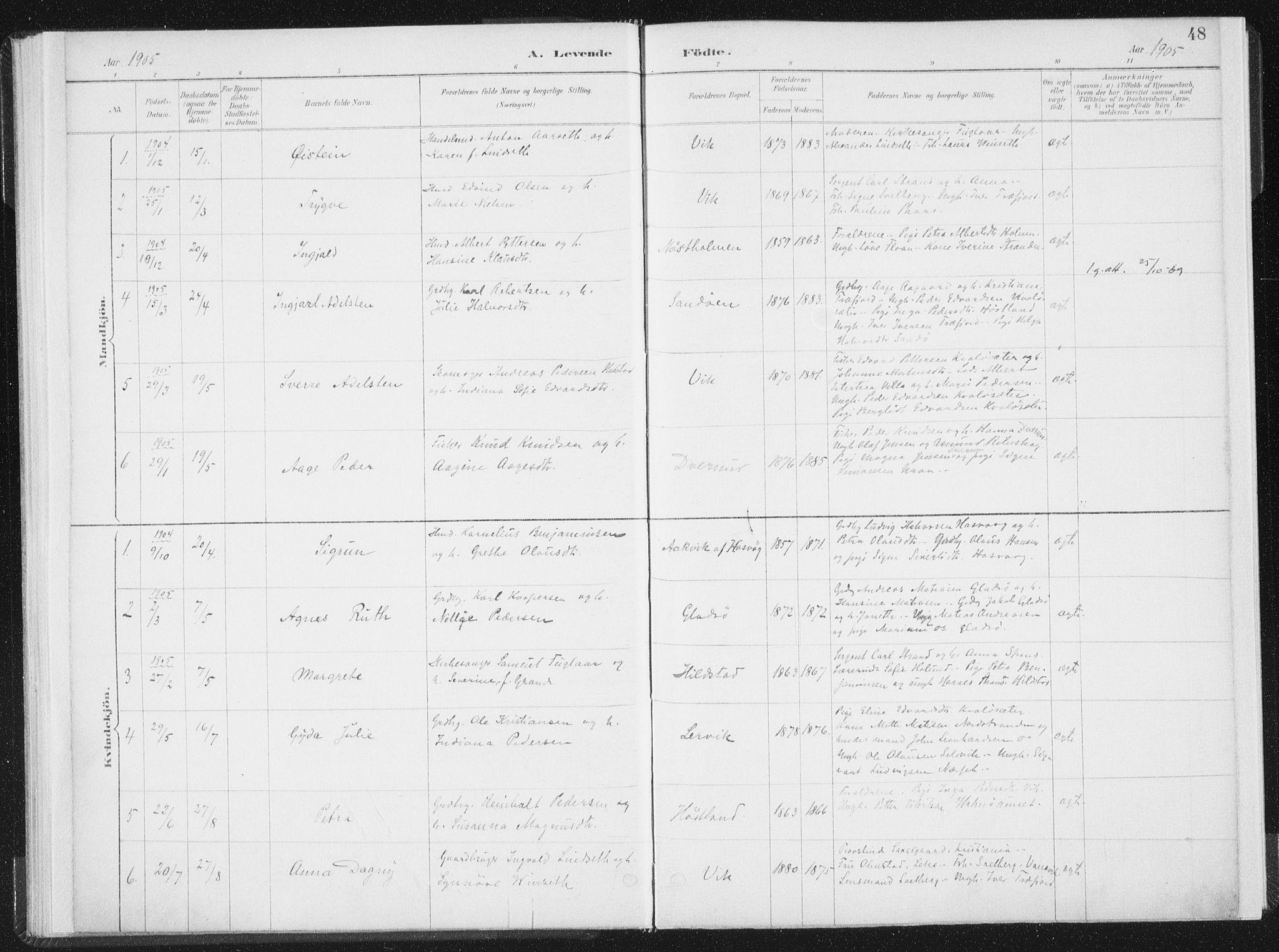 SAT, Ministerialprotokoller, klokkerbøker og fødselsregistre - Nord-Trøndelag, 771/L0597: Ministerialbok nr. 771A04, 1885-1910, s. 48