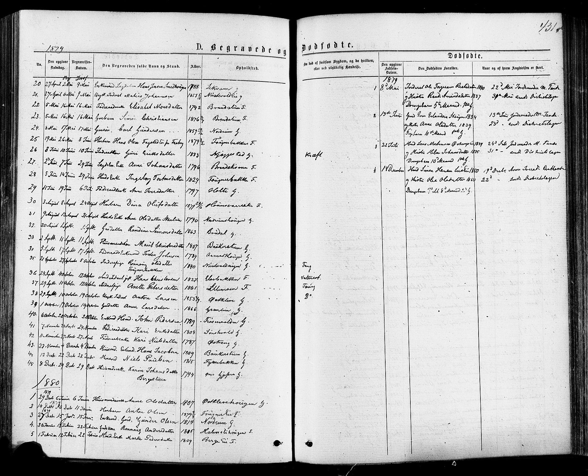 SAH, Østre Gausdal prestekontor, Ministerialbok nr. 1, 1874-1886, s. 431