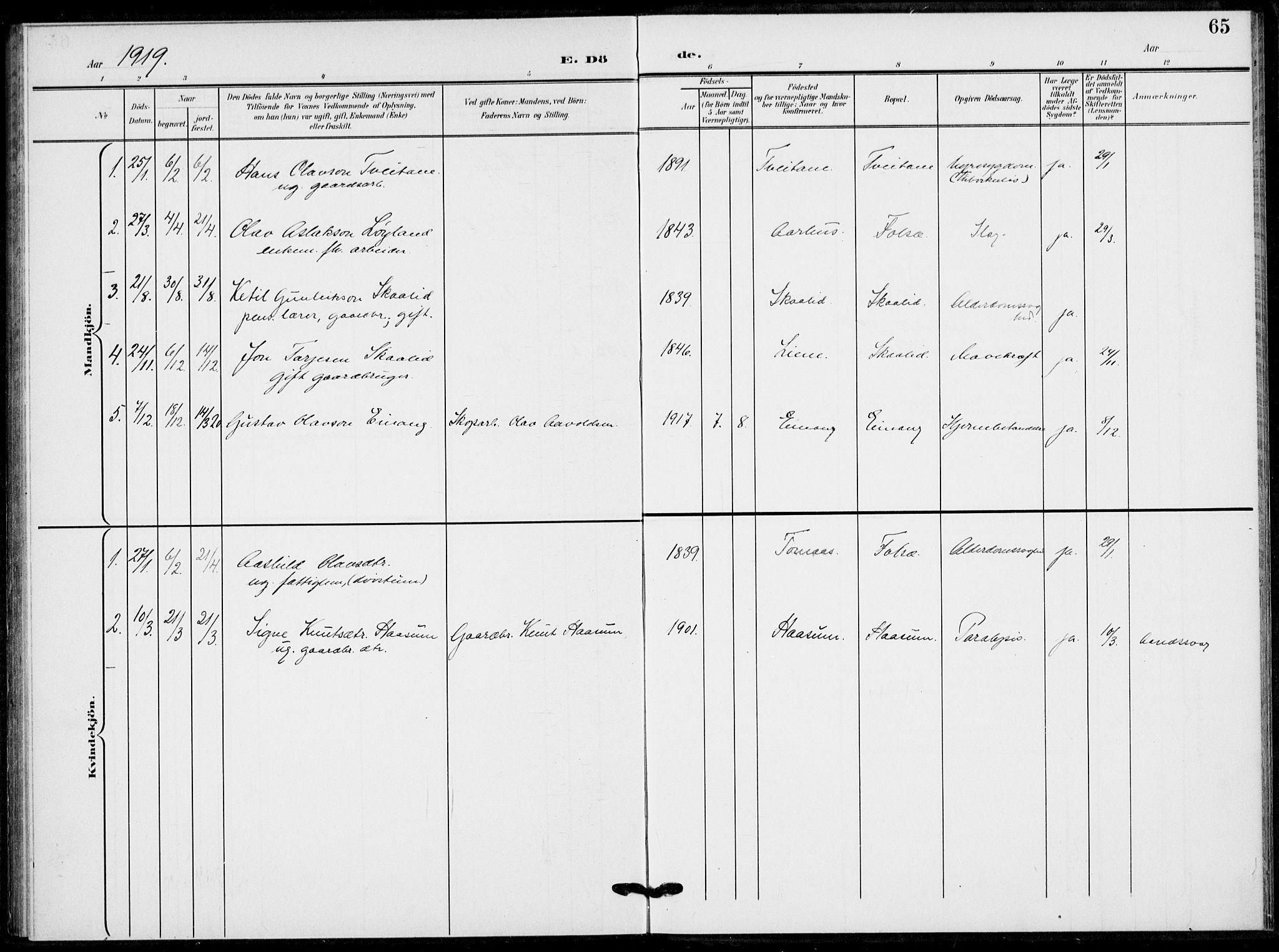 SAKO, Fyresdal kirkebøker, F/Fb/L0004: Ministerialbok nr. II 4, 1903-1920, s. 65