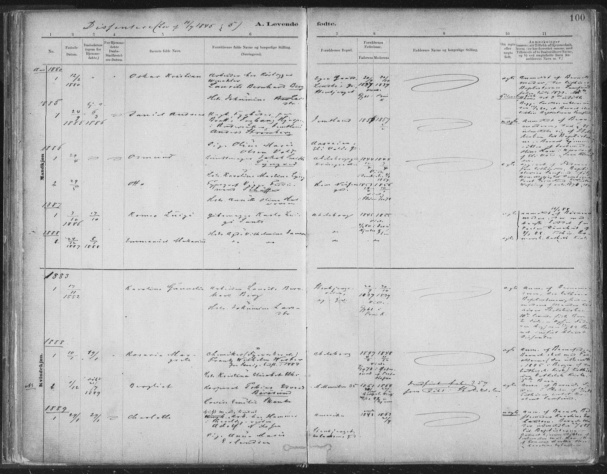 SAT, Ministerialprotokoller, klokkerbøker og fødselsregistre - Sør-Trøndelag, 603/L0162: Ministerialbok nr. 603A01, 1879-1895, s. 100