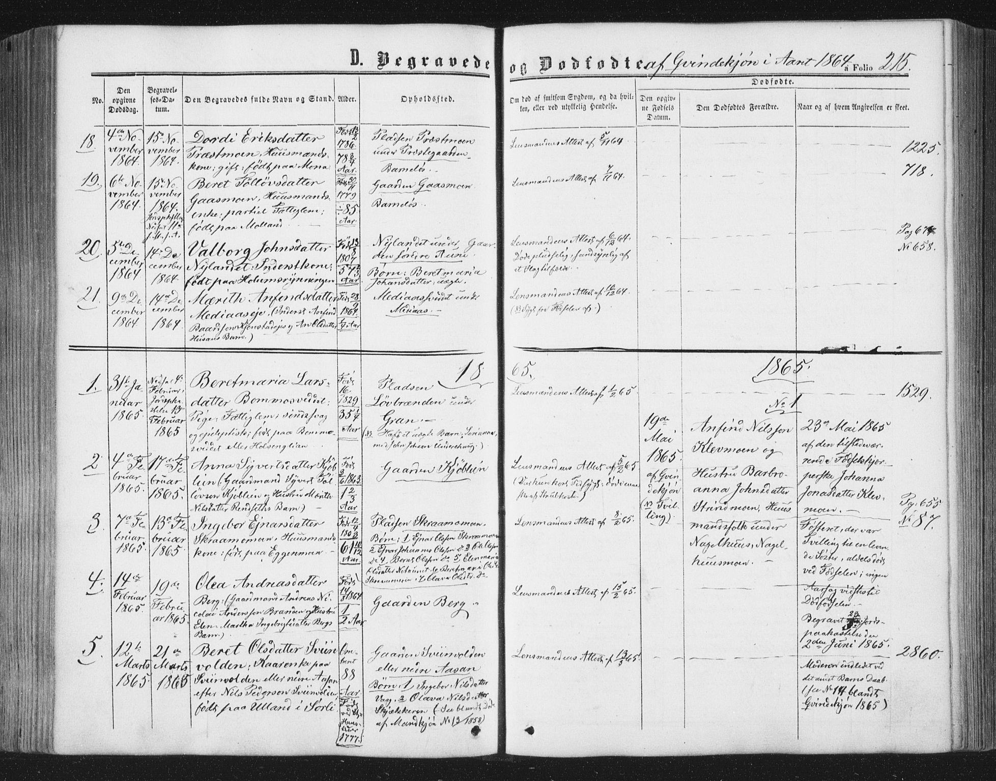 SAT, Ministerialprotokoller, klokkerbøker og fødselsregistre - Nord-Trøndelag, 749/L0472: Ministerialbok nr. 749A06, 1857-1873, s. 215