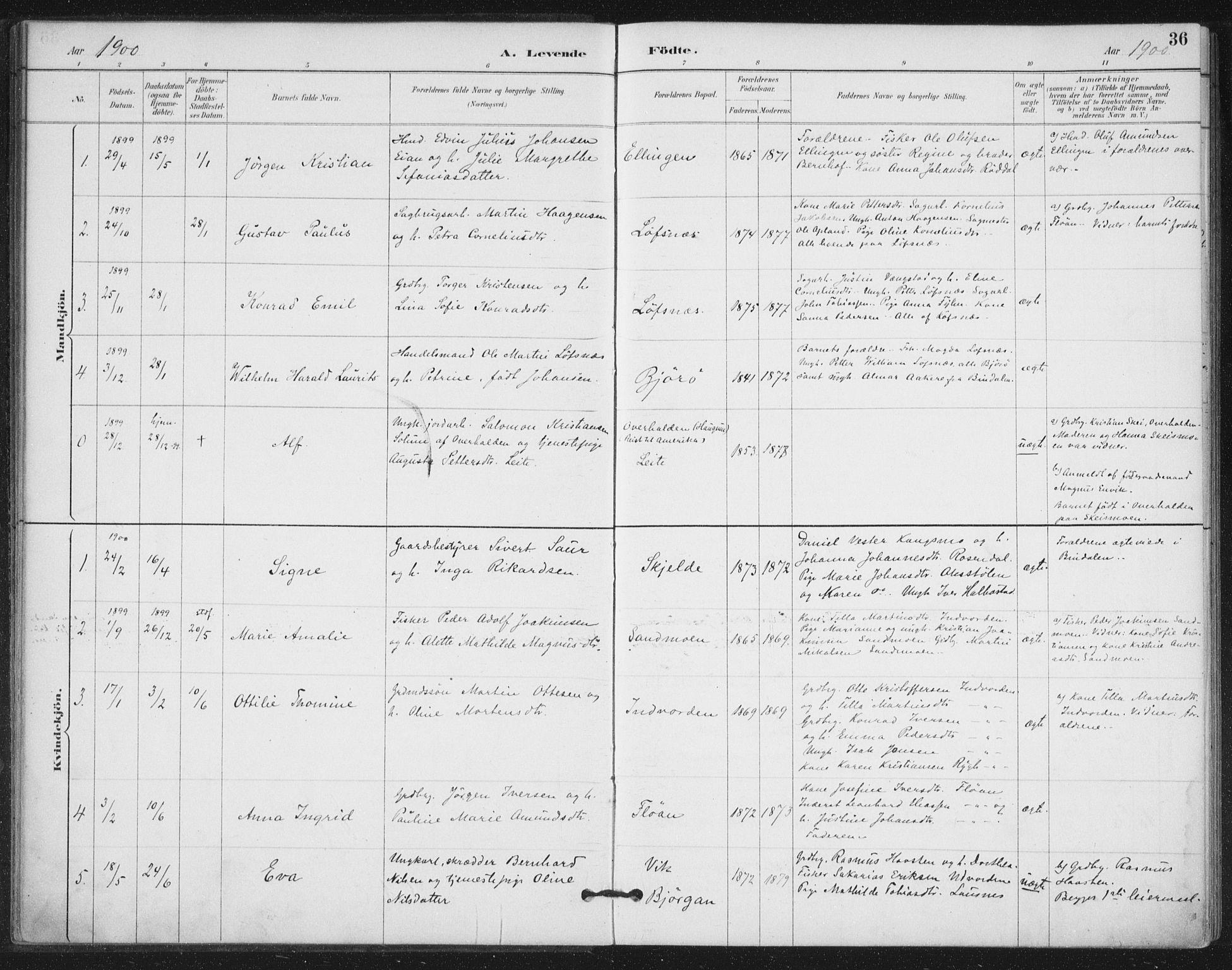 SAT, Ministerialprotokoller, klokkerbøker og fødselsregistre - Nord-Trøndelag, 772/L0603: Ministerialbok nr. 772A01, 1885-1912, s. 36