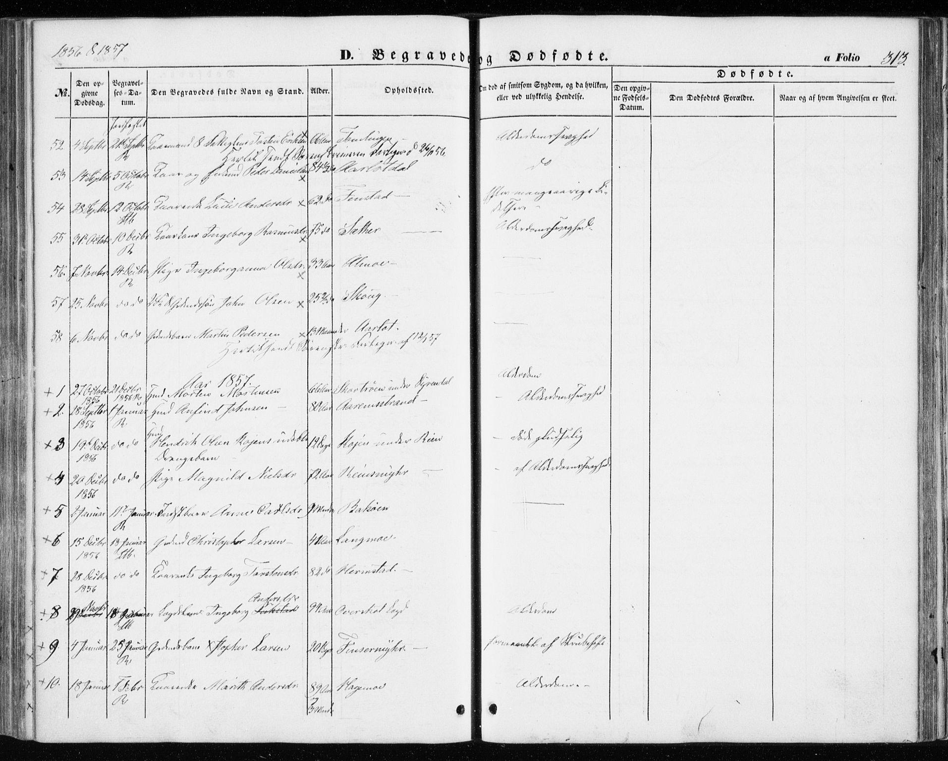 SAT, Ministerialprotokoller, klokkerbøker og fødselsregistre - Sør-Trøndelag, 646/L0611: Ministerialbok nr. 646A09, 1848-1857, s. 313