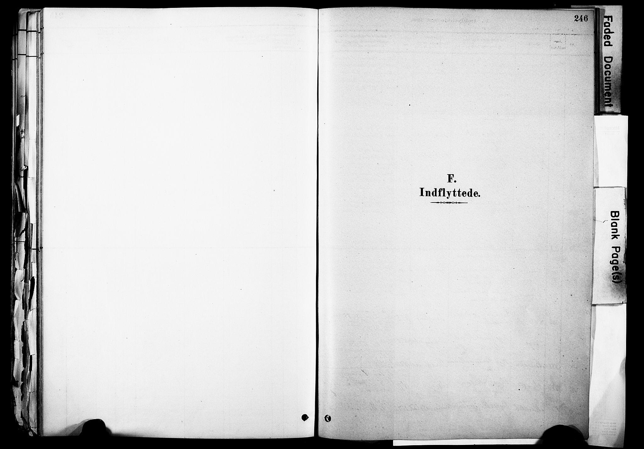 SAH, Skjåk prestekontor, Ministerialbok nr. 3, 1880-1907, s. 246