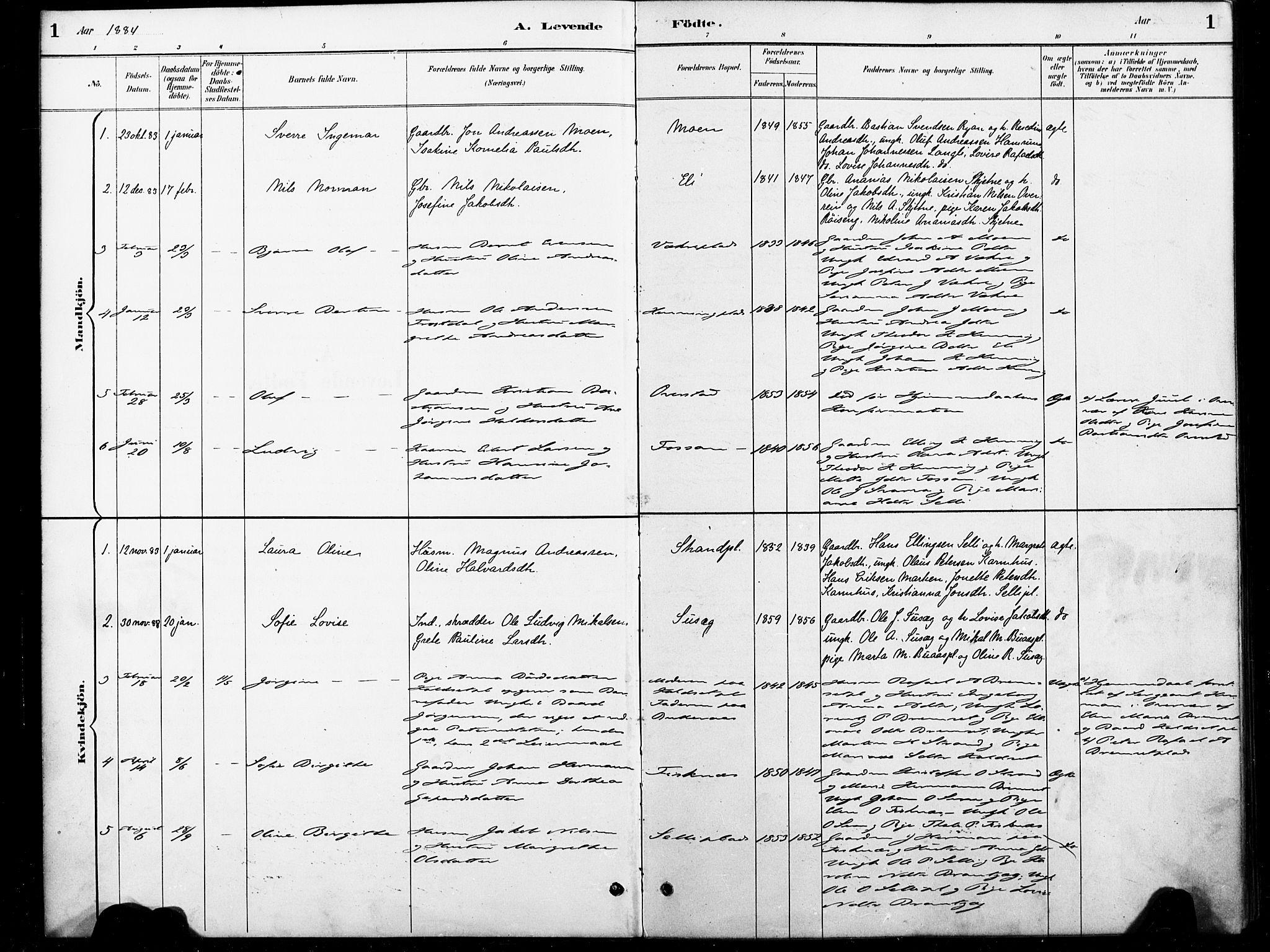 SAT, Ministerialprotokoller, klokkerbøker og fødselsregistre - Nord-Trøndelag, 738/L0364: Ministerialbok nr. 738A01, 1884-1902, s. 1