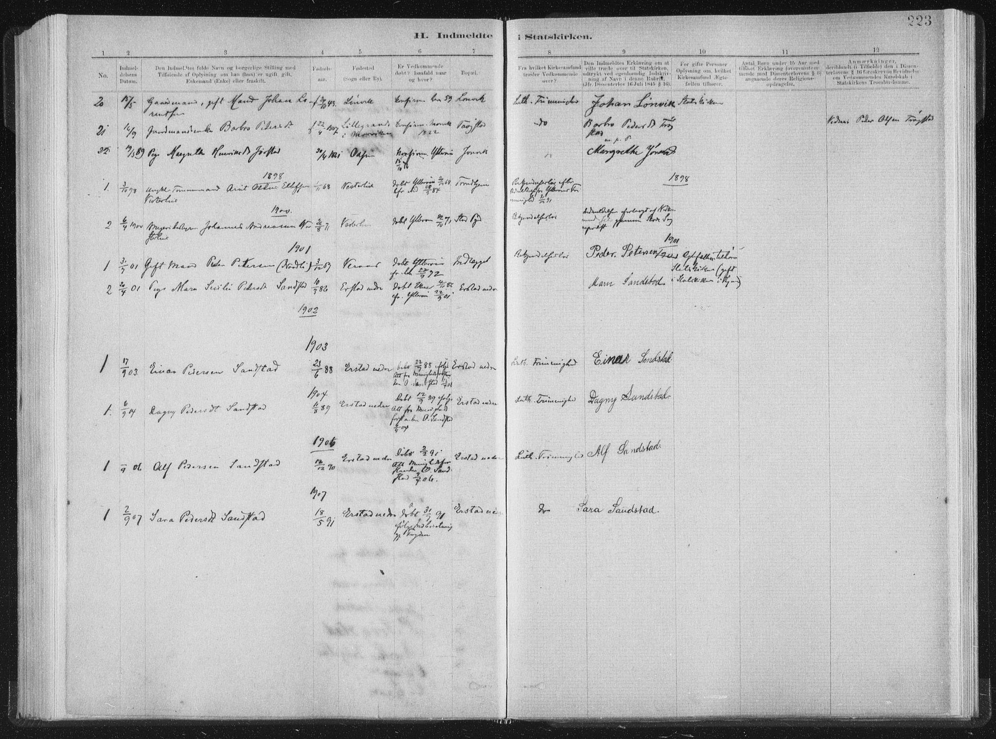 SAT, Ministerialprotokoller, klokkerbøker og fødselsregistre - Nord-Trøndelag, 722/L0220: Ministerialbok nr. 722A07, 1881-1908, s. 223