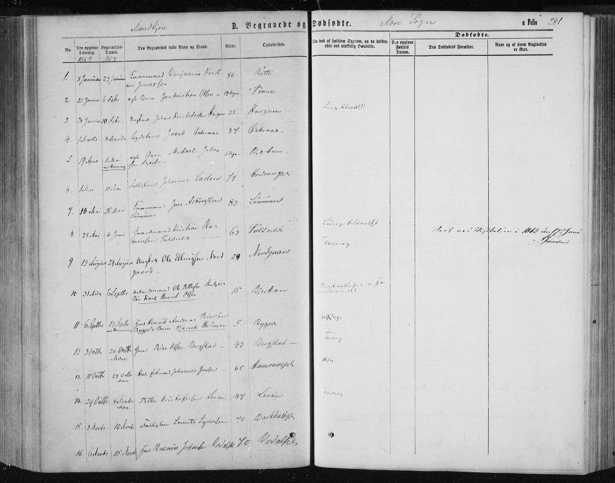 SAT, Ministerialprotokoller, klokkerbøker og fødselsregistre - Nord-Trøndelag, 735/L0345: Ministerialbok nr. 735A08 /1, 1863-1872, s. 281