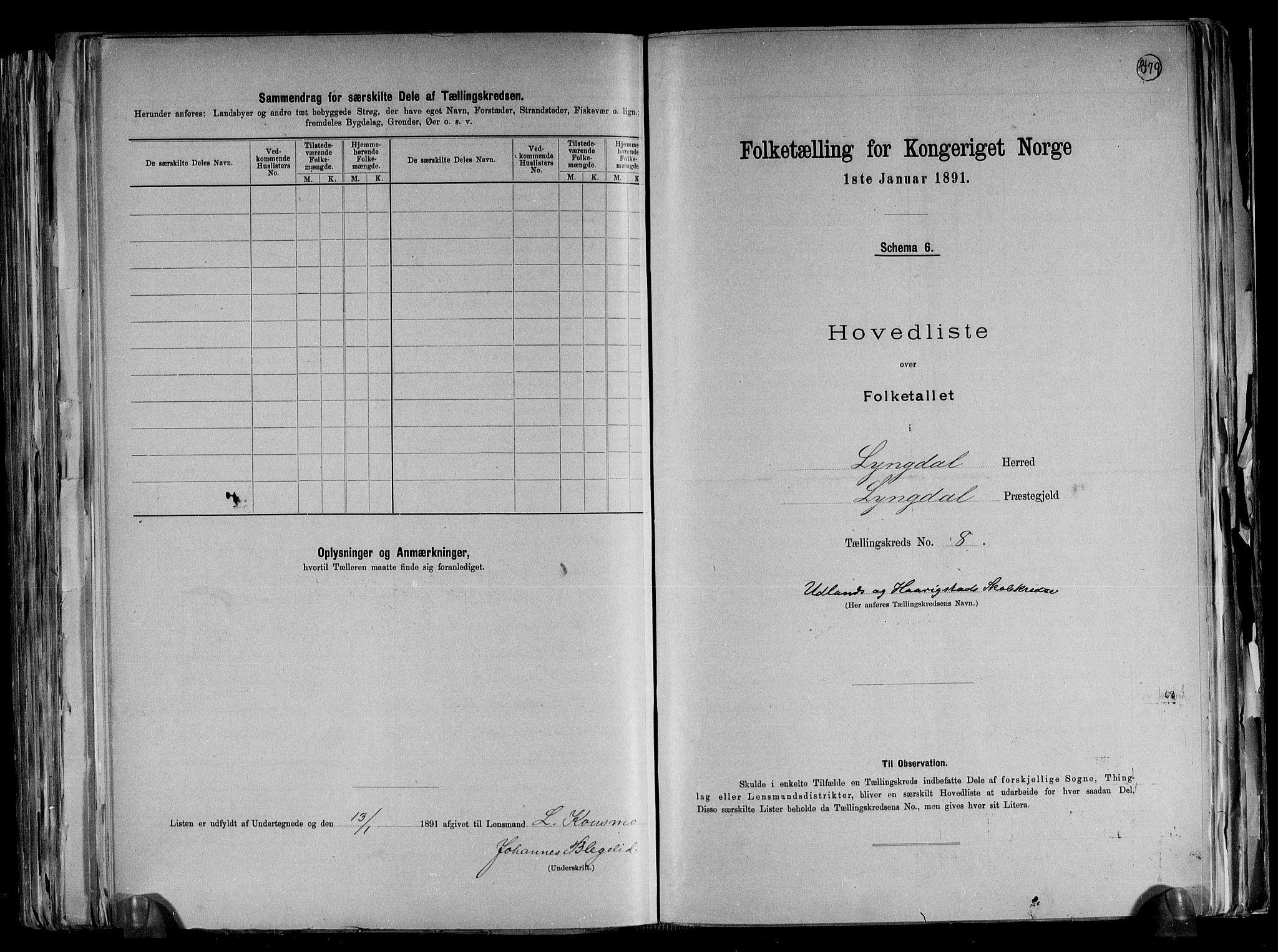 RA, Folketelling 1891 for 1032 Lyngdal herred, 1891, s. 21
